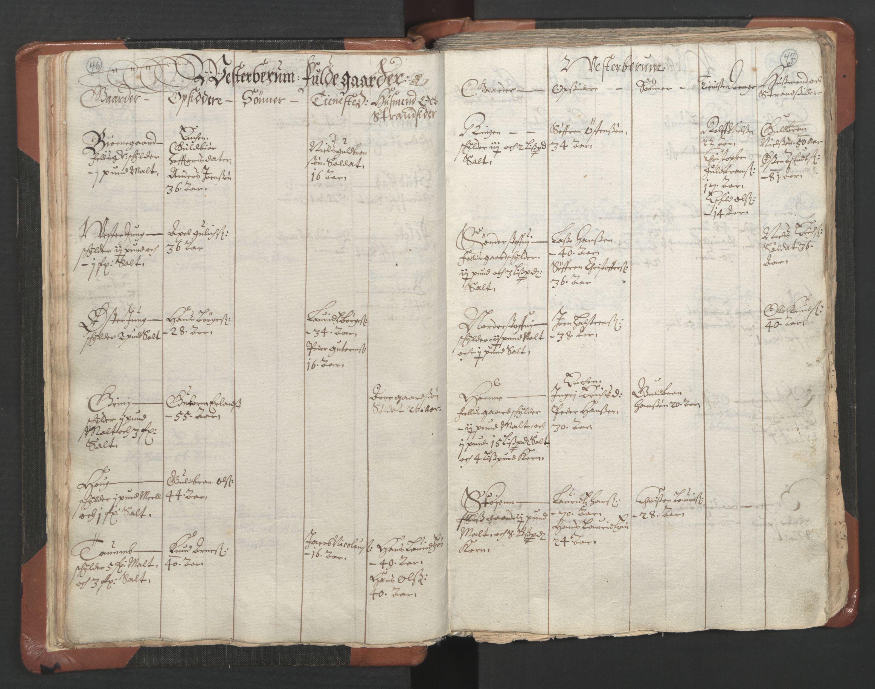 RA, Sogneprestenes manntall 1664-1666, nr. 9: Bragernes prosti, 1664-1666, s. 46-47