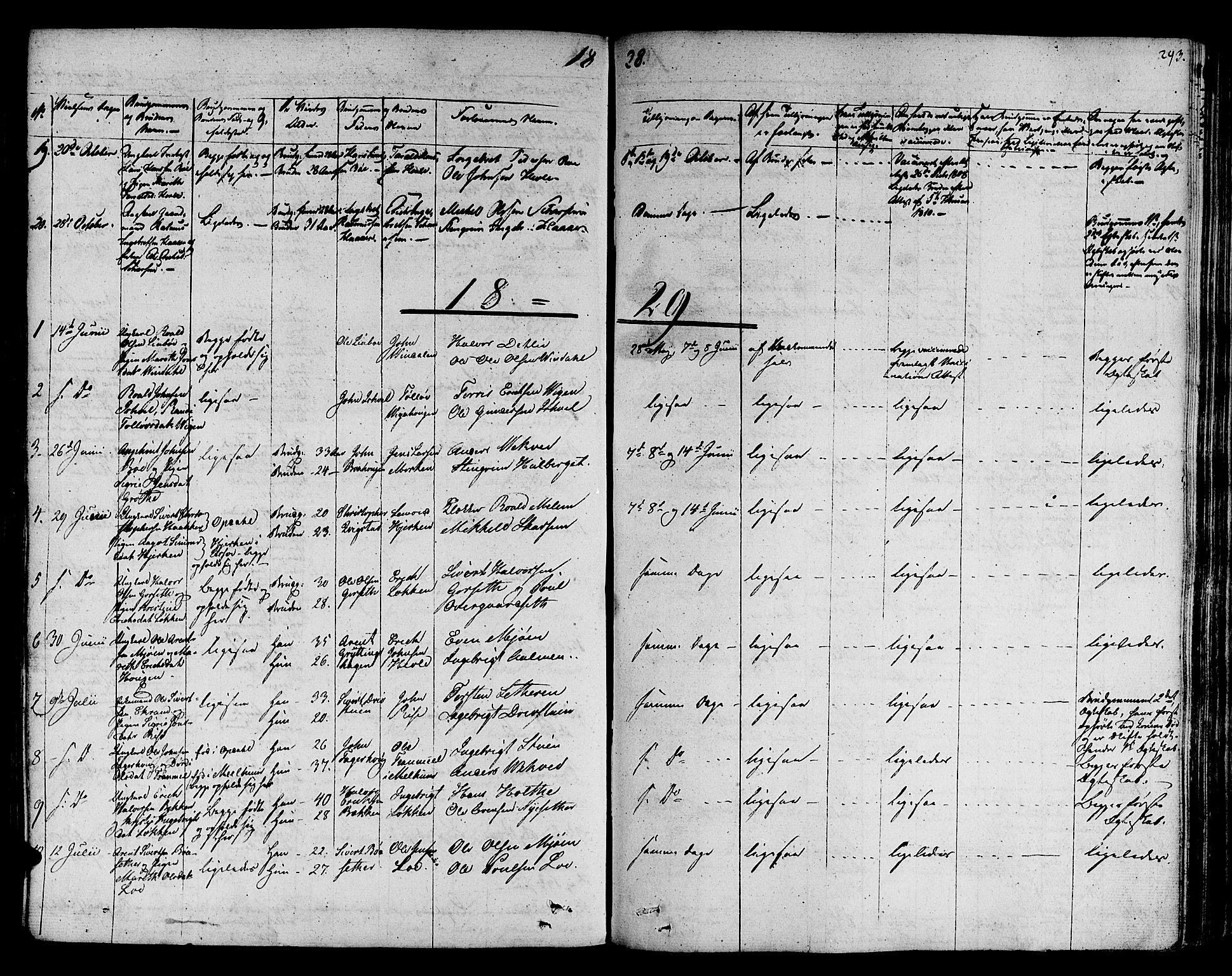 SAT, Ministerialprotokoller, klokkerbøker og fødselsregistre - Sør-Trøndelag, 678/L0897: Ministerialbok nr. 678A06-07, 1821-1847, s. 293