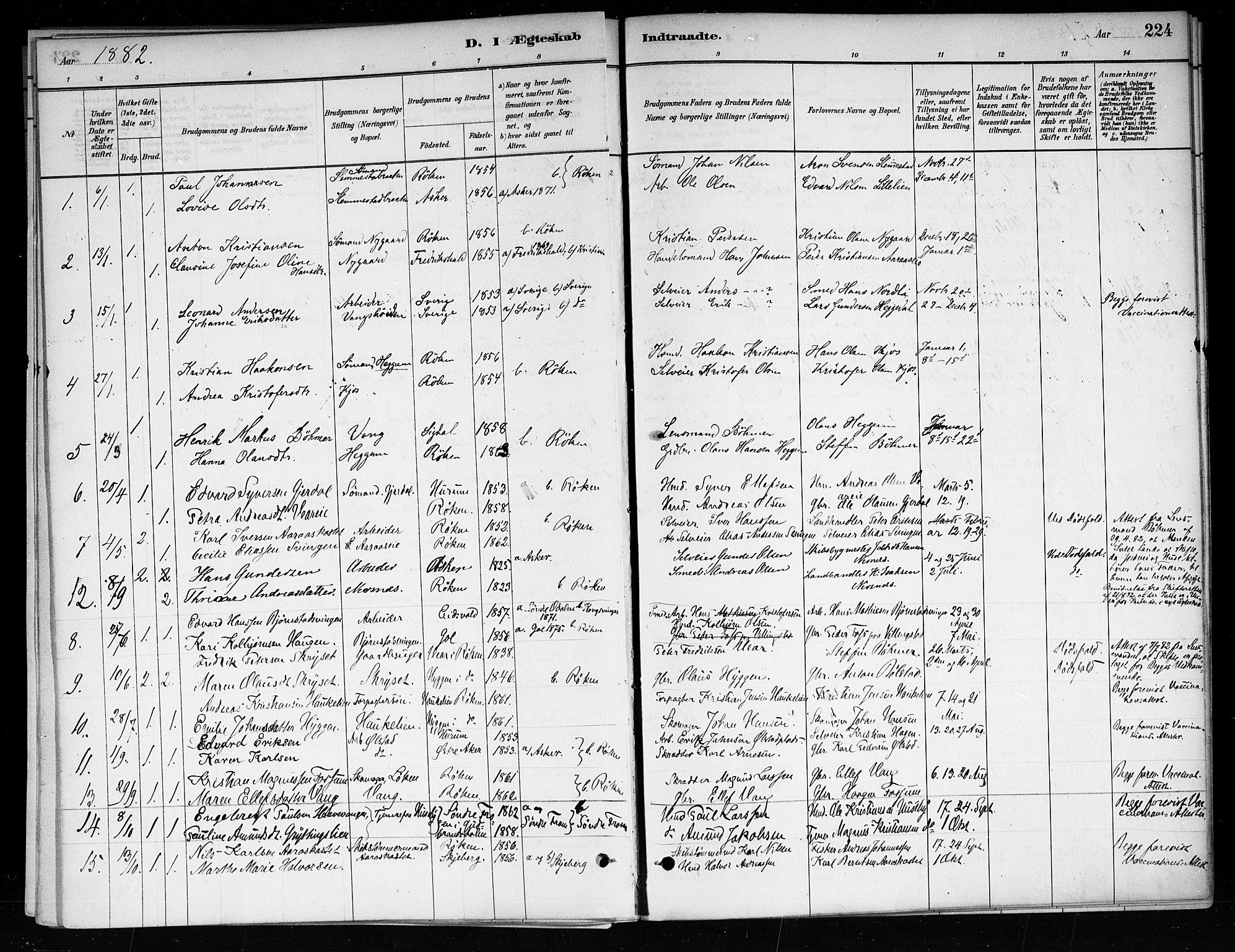 SAKO, Røyken kirkebøker, F/Fa/L0008: Ministerialbok nr. 8, 1880-1897, s. 224