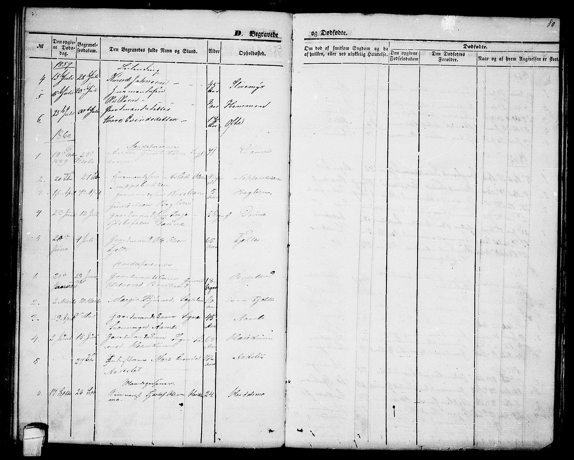 SAKO, Lårdal kirkebøker, G/Gc/L0002: Klokkerbok nr. III 2, 1852-1877, s. 80