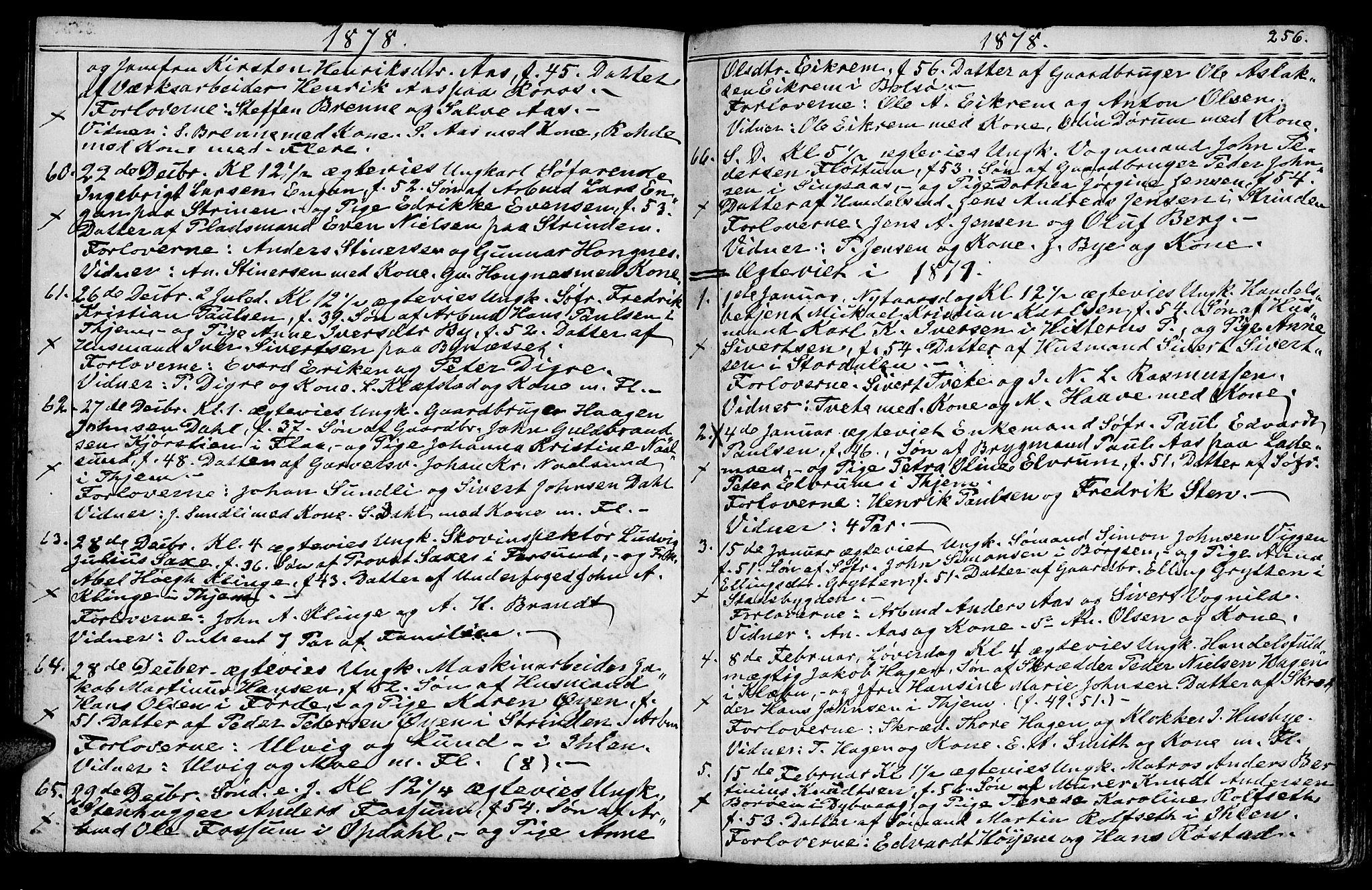 SAT, Ministerialprotokoller, klokkerbøker og fødselsregistre - Sør-Trøndelag, 602/L0142: Klokkerbok nr. 602C10, 1872-1894, s. 256