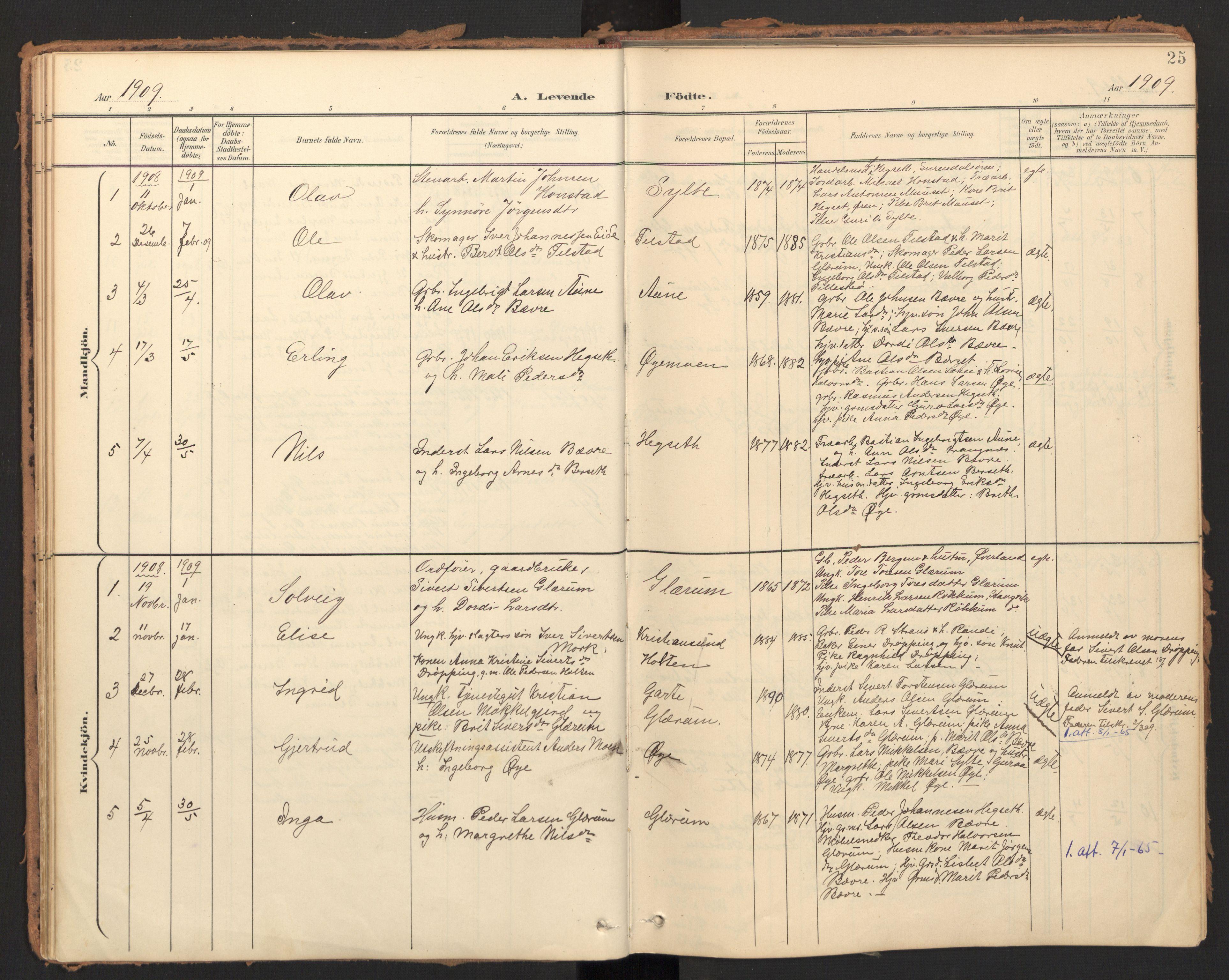 SAT, Ministerialprotokoller, klokkerbøker og fødselsregistre - Møre og Romsdal, 595/L1048: Ministerialbok nr. 595A10, 1900-1917, s. 25