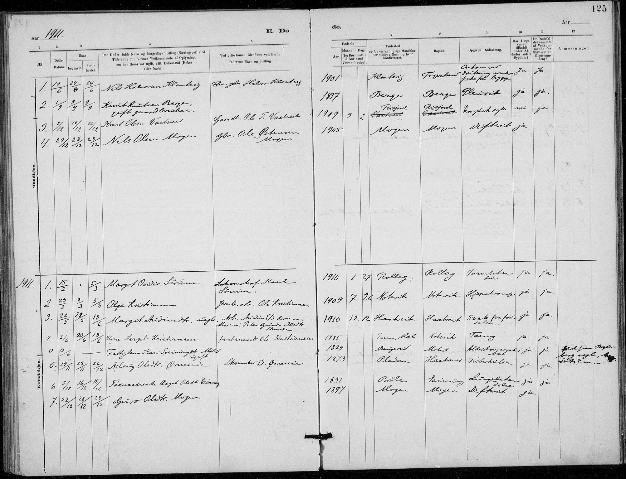 SAKO, Tinn kirkebøker, F/Fb/L0002: Ministerialbok nr. II 2, 1878-1917, s. 125