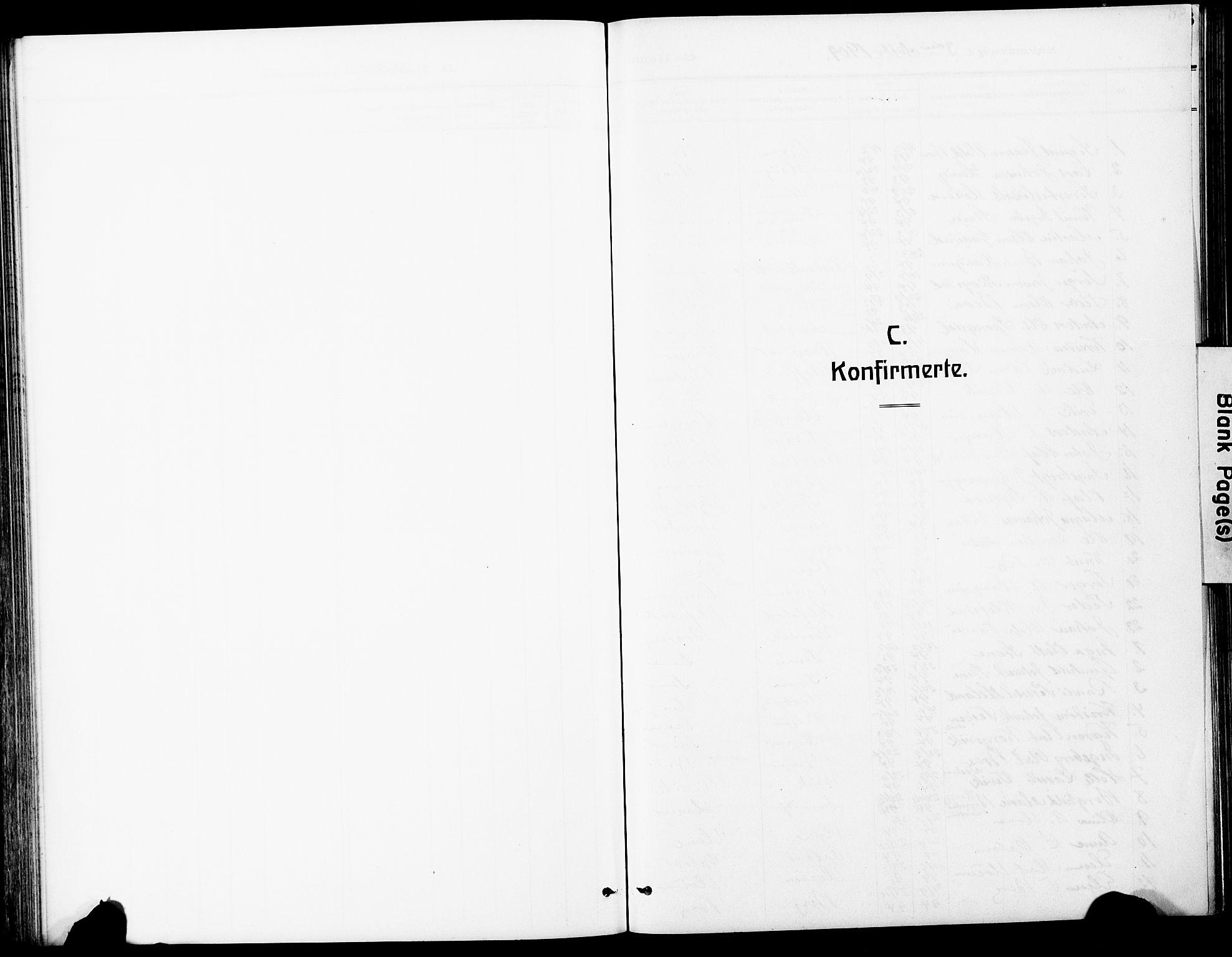 SAT, Ministerialprotokoller, klokkerbøker og fødselsregistre - Sør-Trøndelag, 612/L0388: Klokkerbok nr. 612C04, 1909-1929