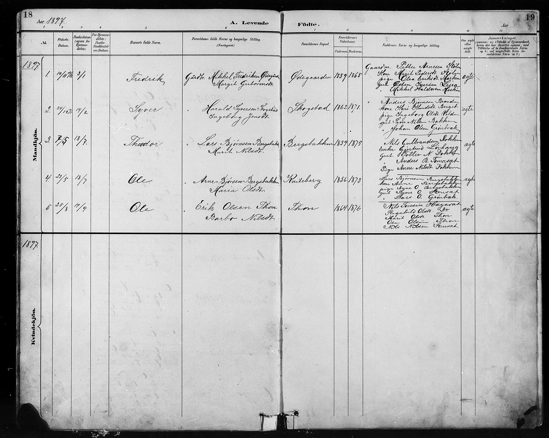 SAH, Etnedal prestekontor, H/Ha/Hab/Habb/L0001: Klokkerbok nr. II 1, 1894-1911, s. 18-19