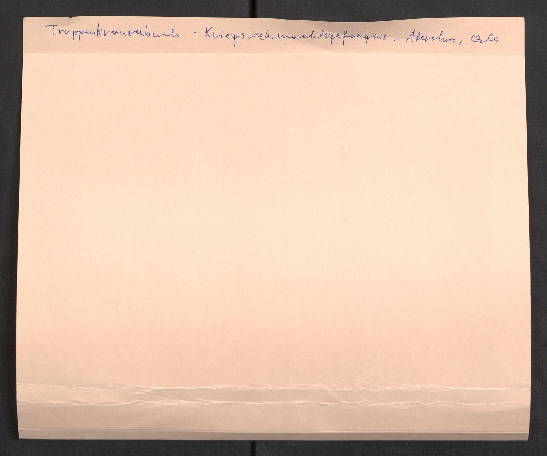 RA, Befehlshaber der Sicherheitspolizei und des SD, E/Eb/L0005: Materiale fra sykestua, 1944-1945