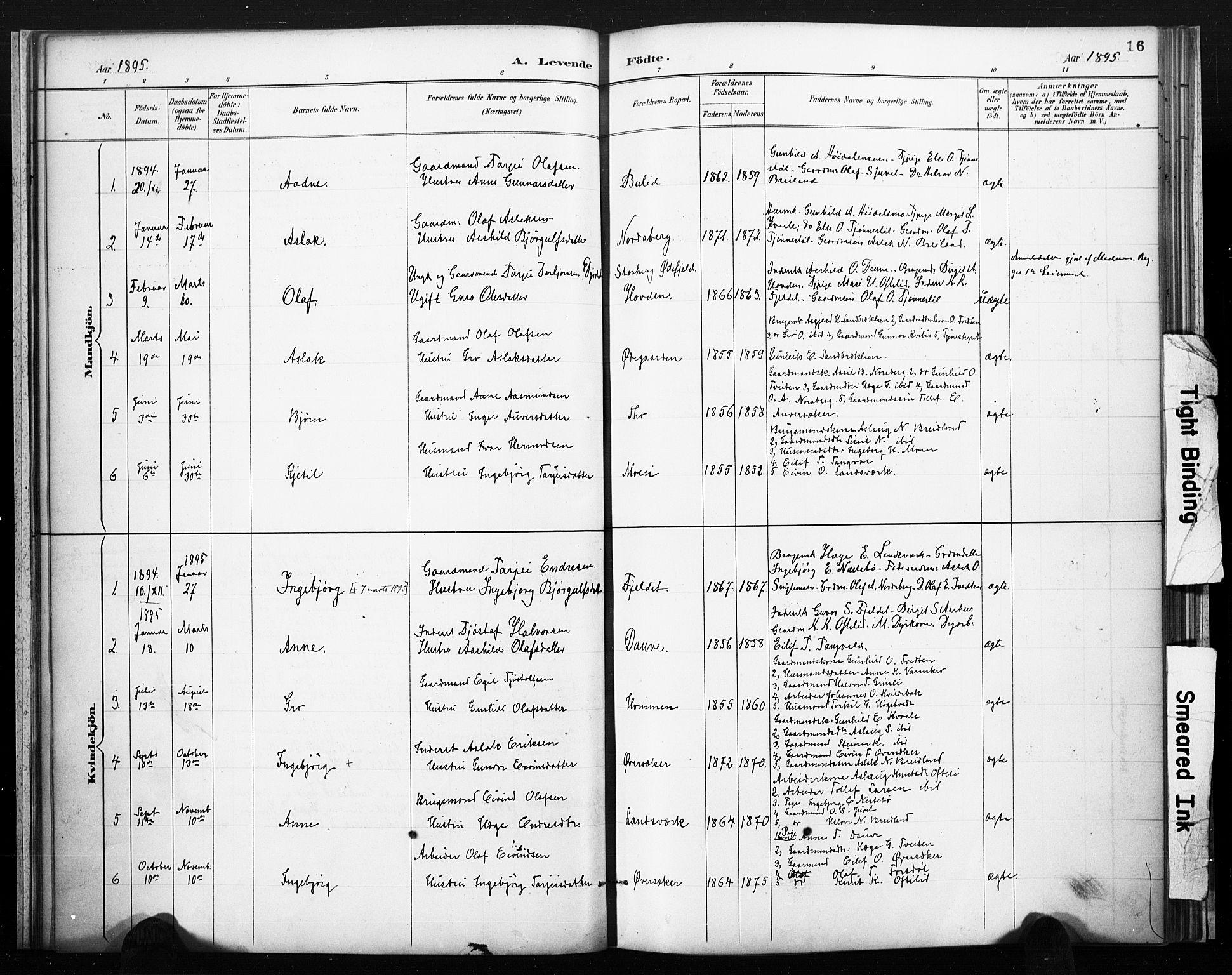 SAKO, Lårdal kirkebøker, F/Fc/L0002: Ministerialbok nr. III 2, 1887-1906, s. 16