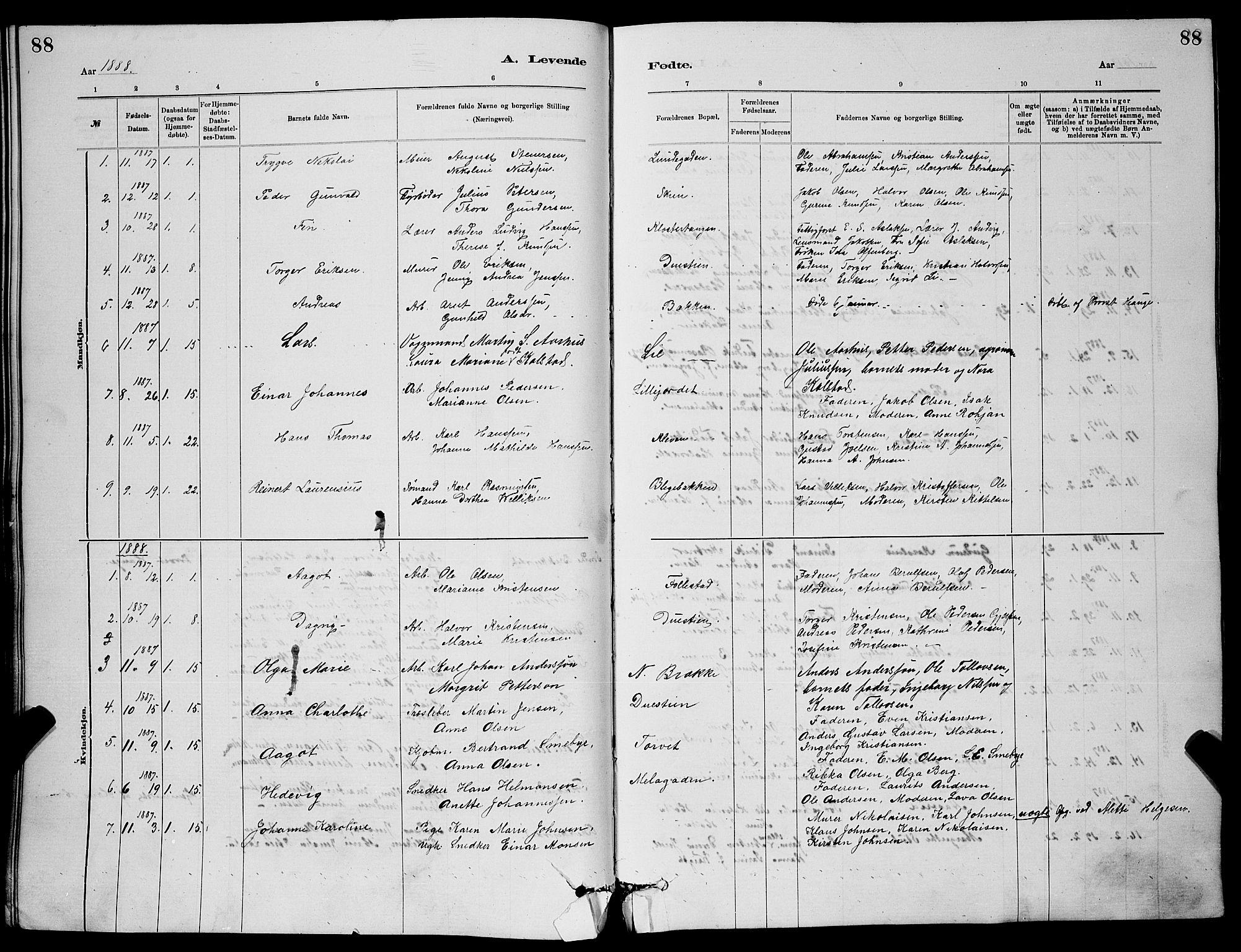 SAKO, Skien kirkebøker, G/Ga/L0006: Klokkerbok nr. 6, 1881-1890, s. 88