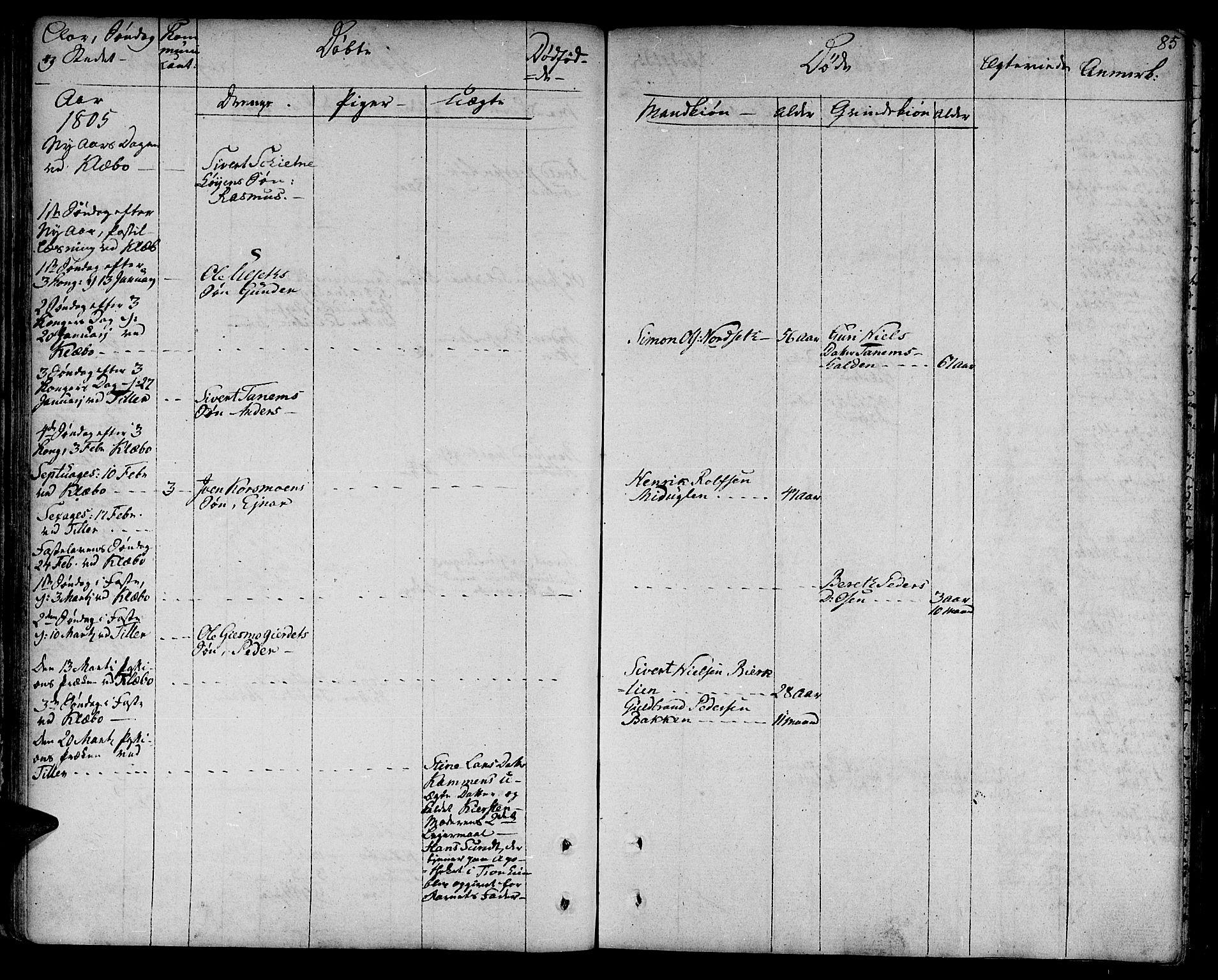 SAT, Ministerialprotokoller, klokkerbøker og fødselsregistre - Sør-Trøndelag, 618/L0438: Ministerialbok nr. 618A03, 1783-1815, s. 85