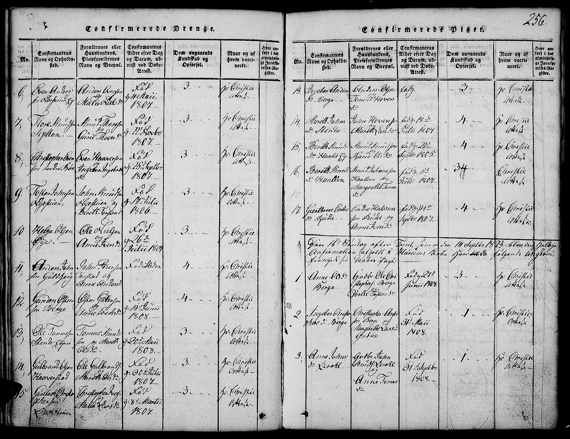 SAH, Vang prestekontor, Valdres, Klokkerbok nr. 2, 1814-1889, s. 256
