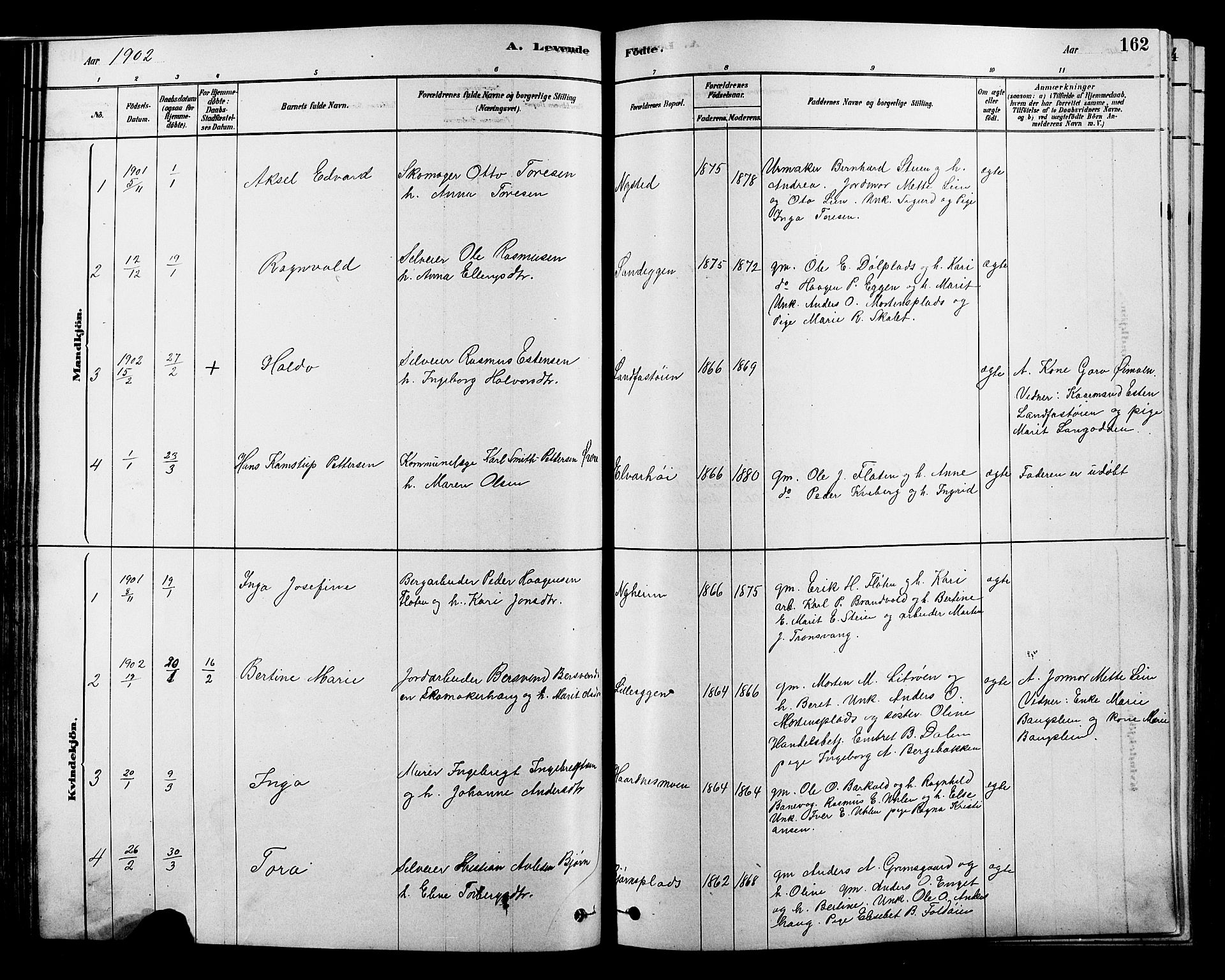 SAH, Alvdal prestekontor, Klokkerbok nr. 3, 1878-1907, s. 162