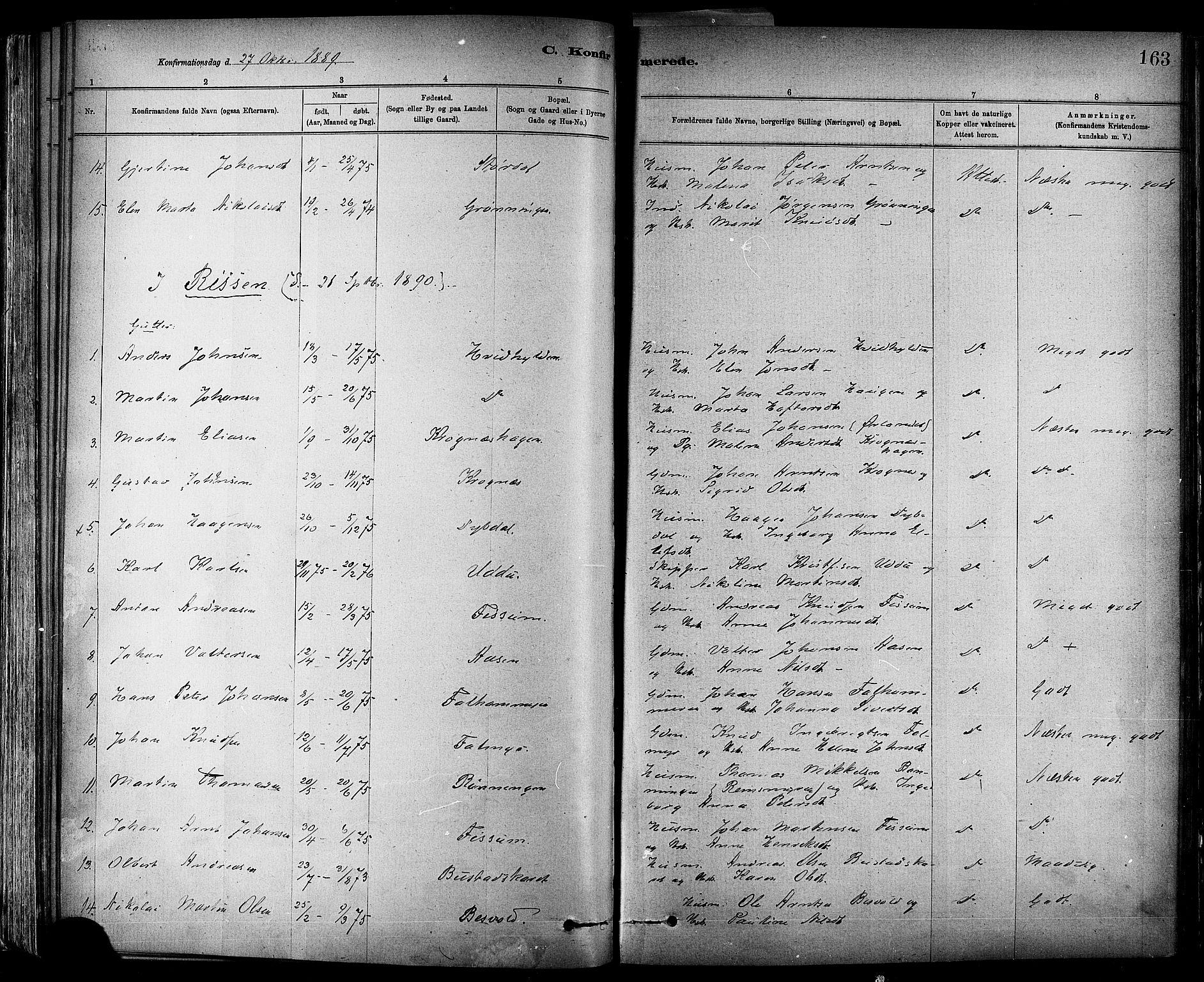 SAT, Ministerialprotokoller, klokkerbøker og fødselsregistre - Sør-Trøndelag, 647/L0634: Ministerialbok nr. 647A01, 1885-1896, s. 163