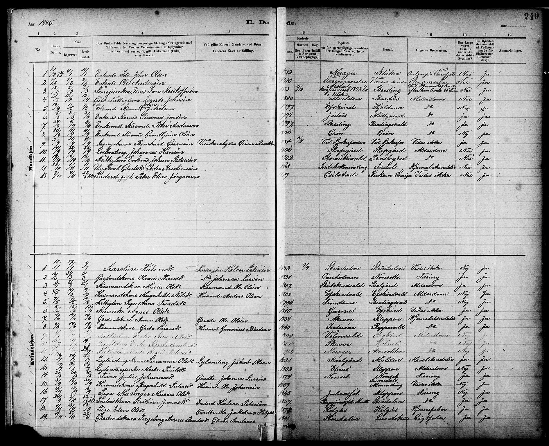 SAT, Ministerialprotokoller, klokkerbøker og fødselsregistre - Nord-Trøndelag, 724/L0267: Klokkerbok nr. 724C03, 1879-1898, s. 249