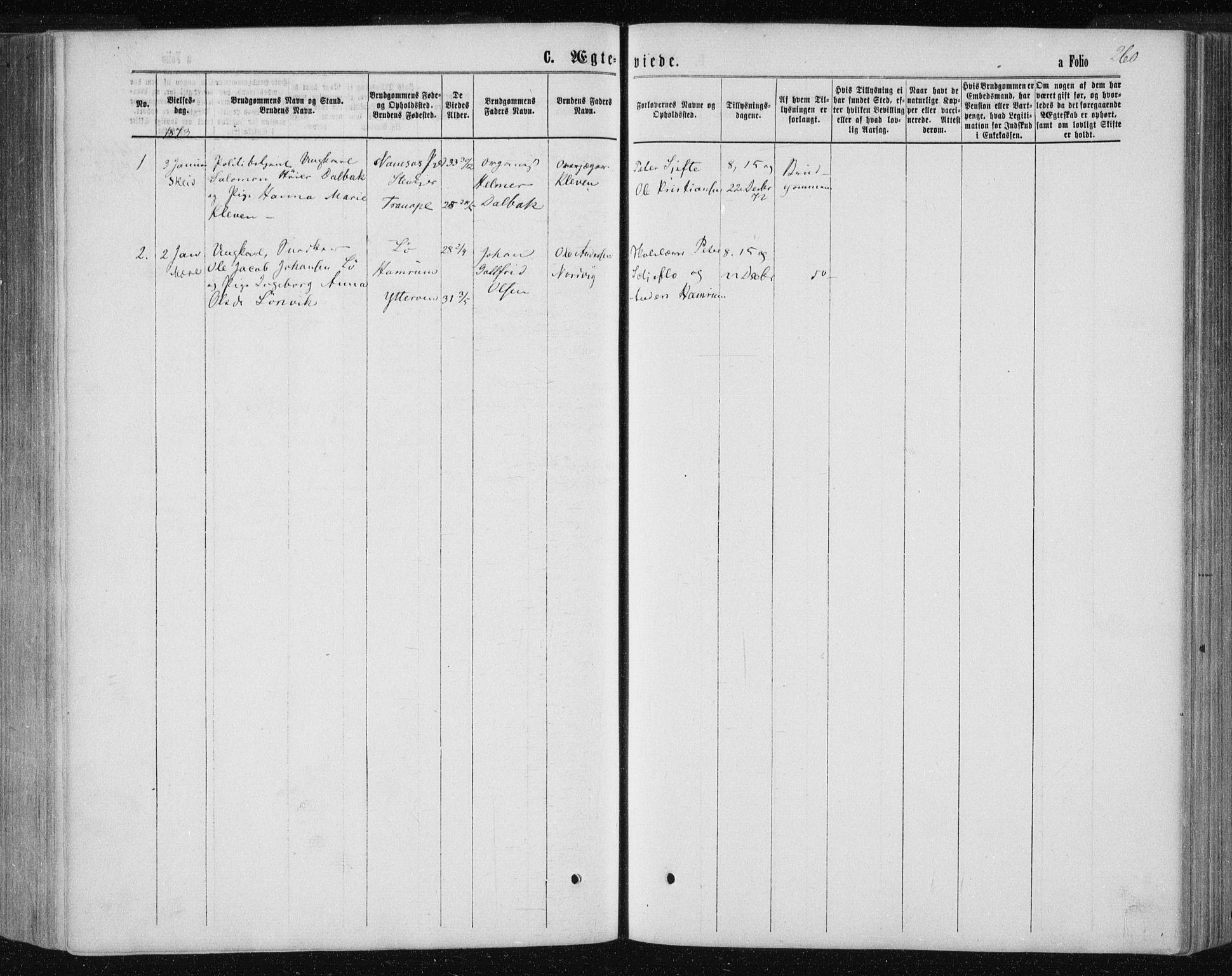 SAT, Ministerialprotokoller, klokkerbøker og fødselsregistre - Nord-Trøndelag, 735/L0345: Ministerialbok nr. 735A08 /1, 1863-1872, s. 260