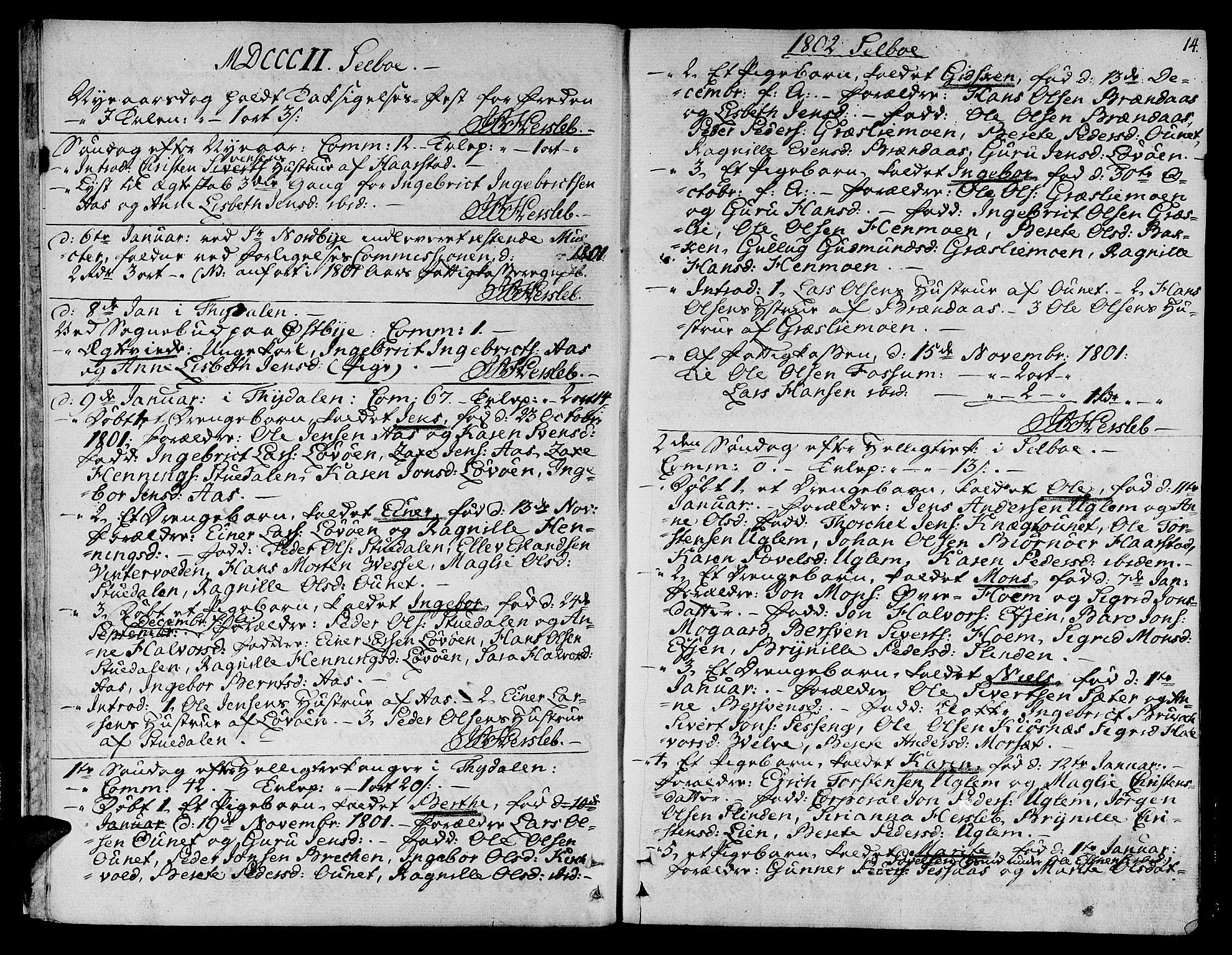 SAT, Ministerialprotokoller, klokkerbøker og fødselsregistre - Sør-Trøndelag, 695/L1140: Ministerialbok nr. 695A03, 1801-1815, s. 14