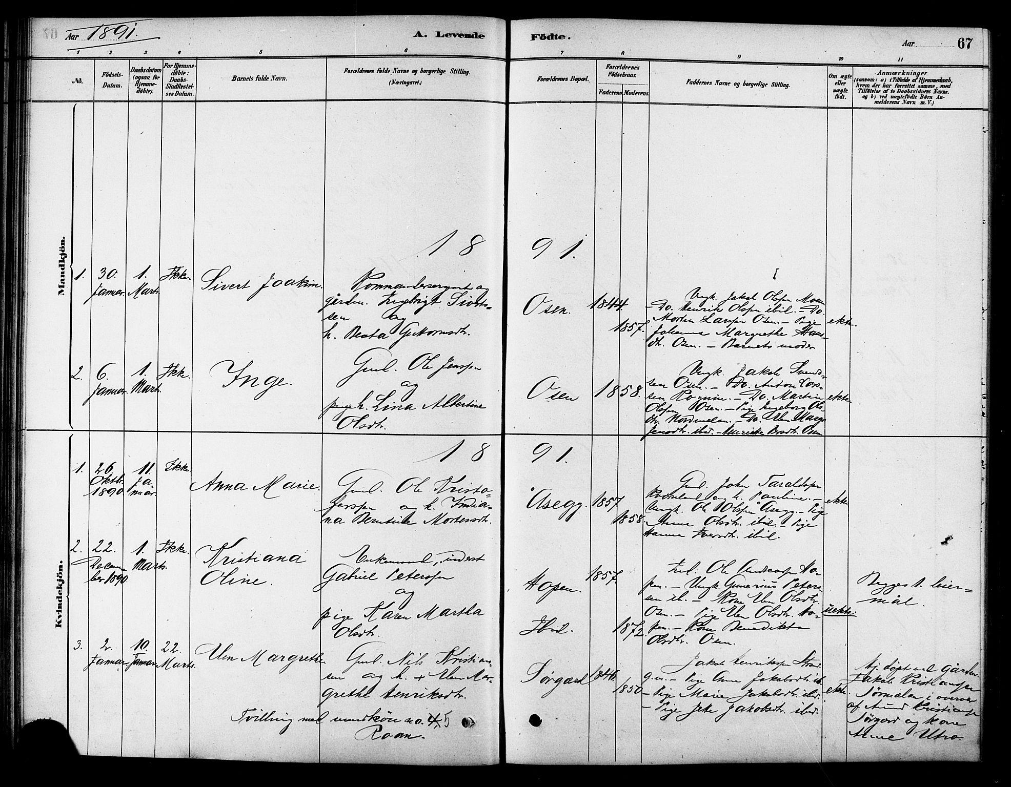 SAT, Ministerialprotokoller, klokkerbøker og fødselsregistre - Sør-Trøndelag, 658/L0722: Ministerialbok nr. 658A01, 1879-1896, s. 67