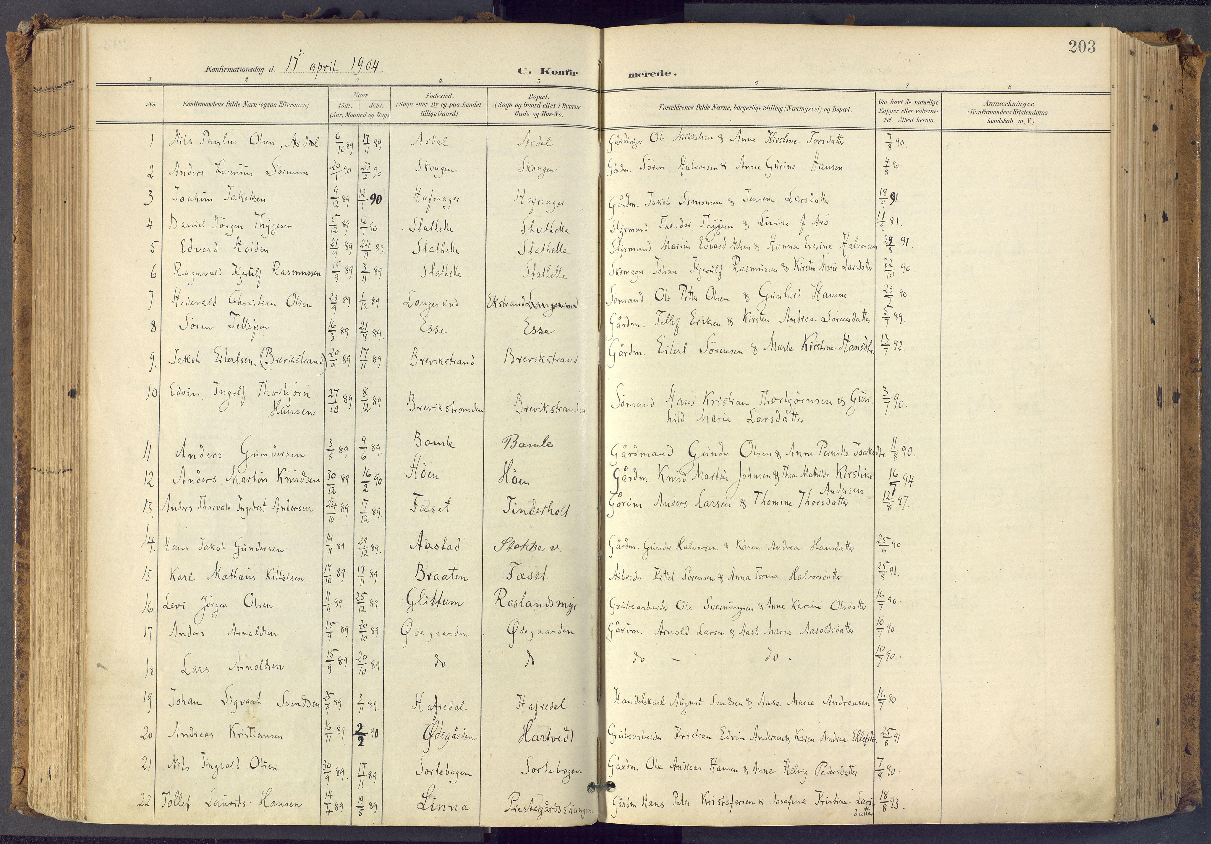 SAKO, Bamble kirkebøker, F/Fa/L0009: Ministerialbok nr. I 9, 1901-1917, s. 203