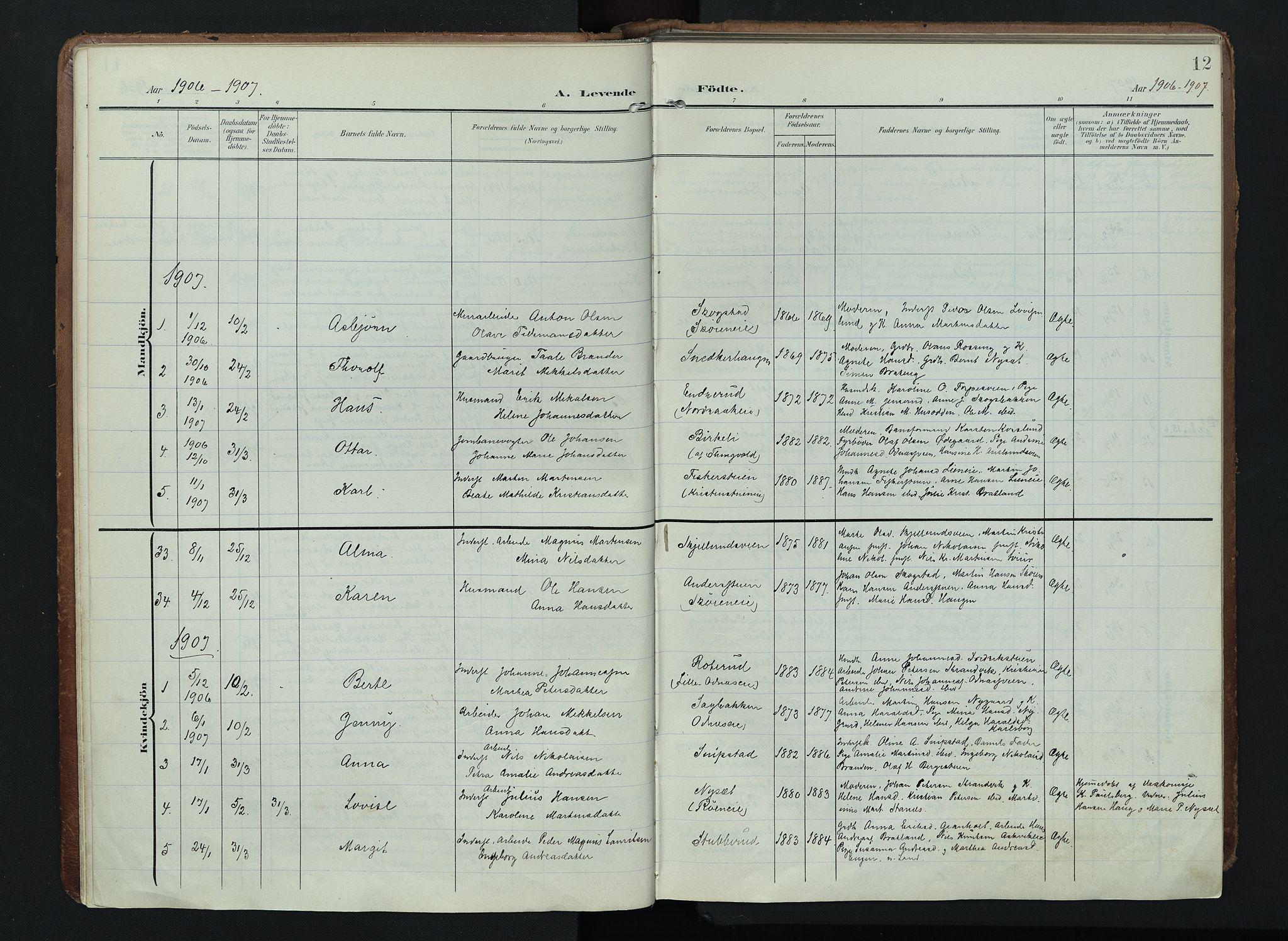 SAH, Søndre Land prestekontor, K/L0005: Ministerialbok nr. 5, 1905-1914, s. 12
