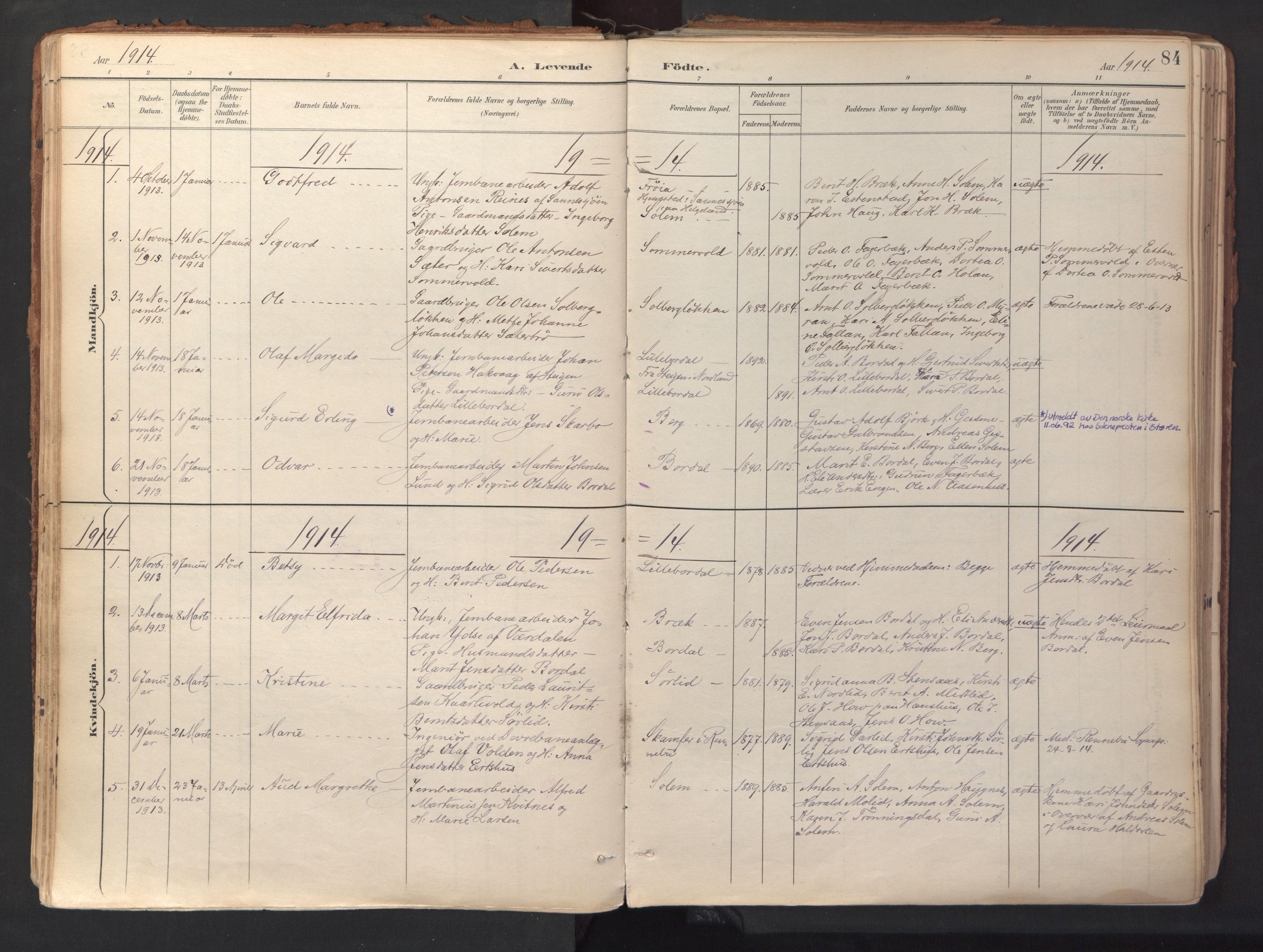 SAT, Ministerialprotokoller, klokkerbøker og fødselsregistre - Sør-Trøndelag, 689/L1041: Ministerialbok nr. 689A06, 1891-1923, s. 84