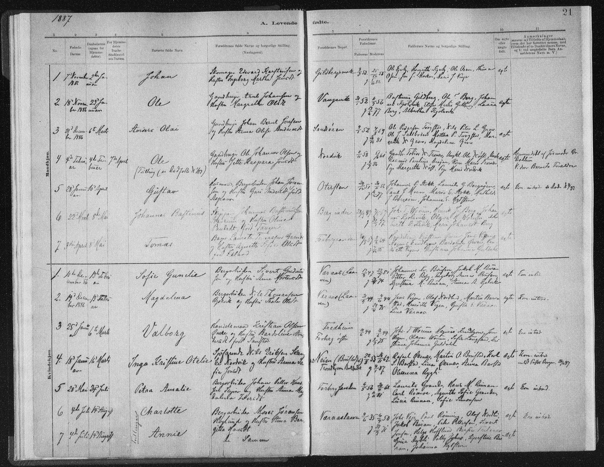 SAT, Ministerialprotokoller, klokkerbøker og fødselsregistre - Nord-Trøndelag, 722/L0220: Ministerialbok nr. 722A07, 1881-1908, s. 21