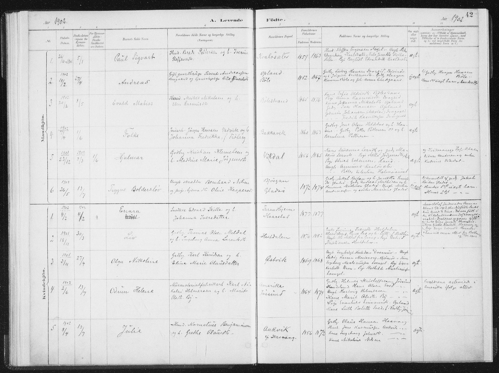 SAT, Ministerialprotokoller, klokkerbøker og fødselsregistre - Nord-Trøndelag, 771/L0597: Ministerialbok nr. 771A04, 1885-1910, s. 42