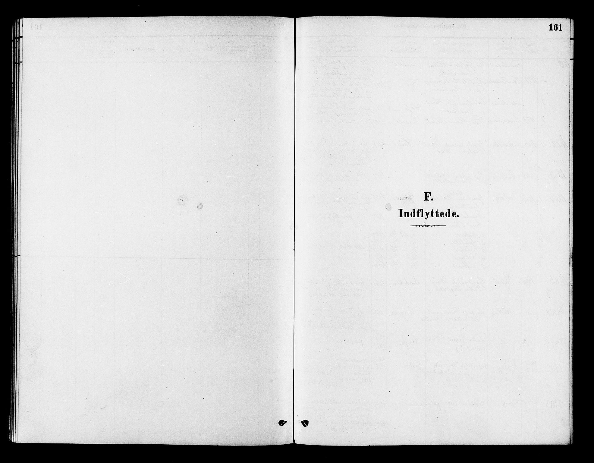SAKO, Flesberg kirkebøker, F/Fb/L0001: Ministerialbok nr. II 1, 1879-1907, s. 161
