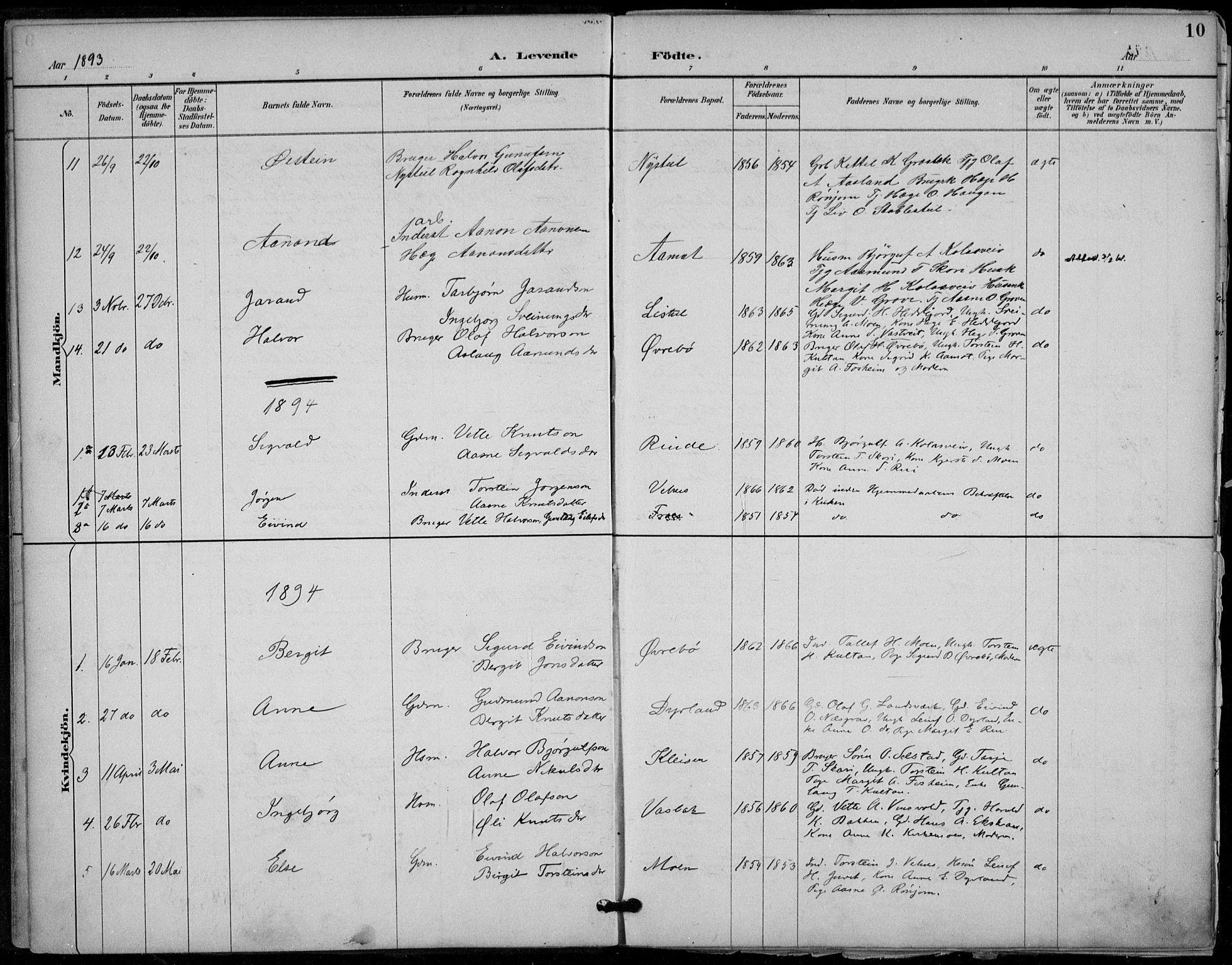 SAKO, Seljord kirkebøker, F/Fc/L0002: Ministerialbok nr. III 2, 1887-1920, s. 10