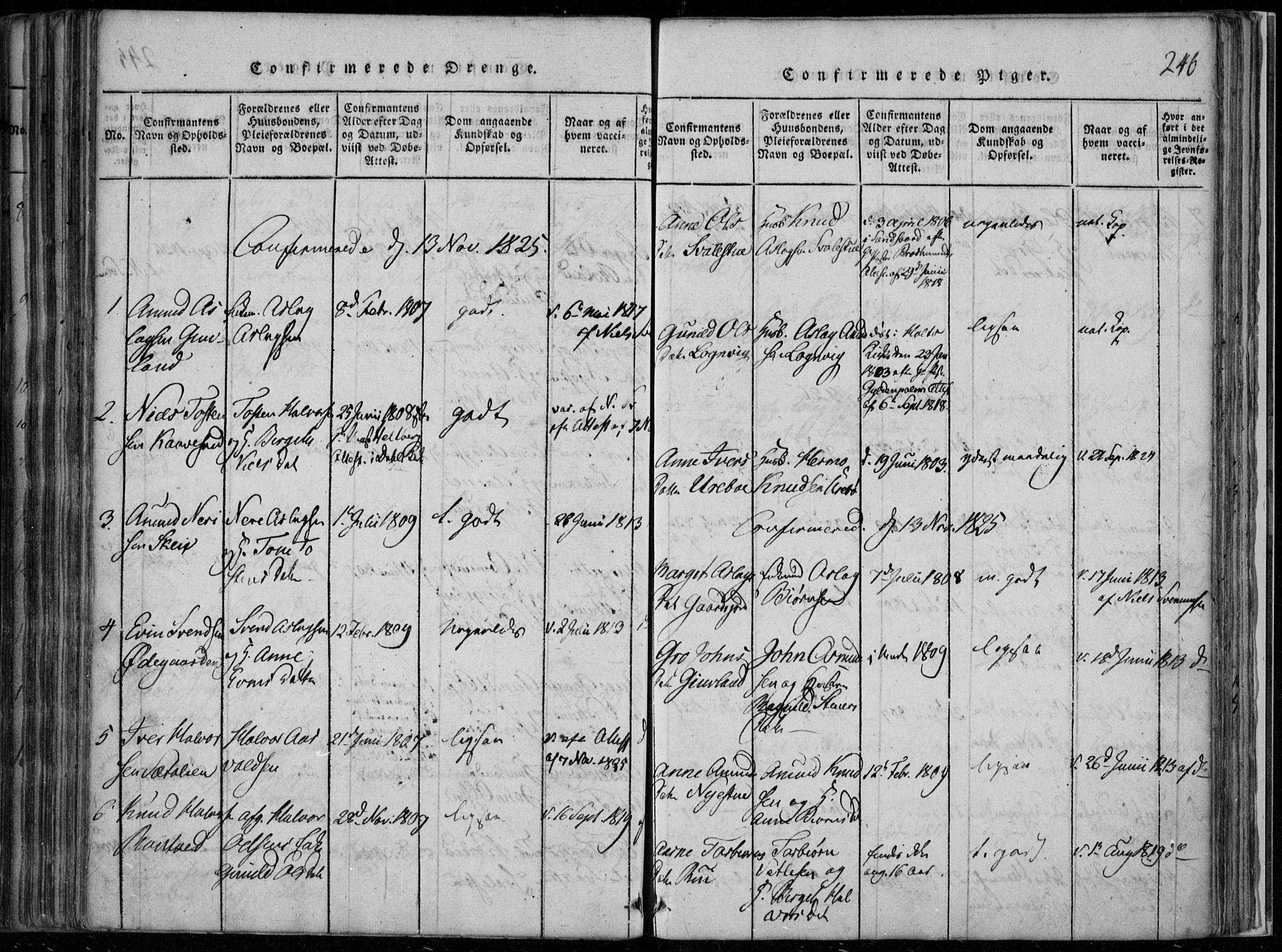 SAKO, Rauland kirkebøker, F/Fa/L0001: Ministerialbok nr. 1, 1814-1859, s. 246