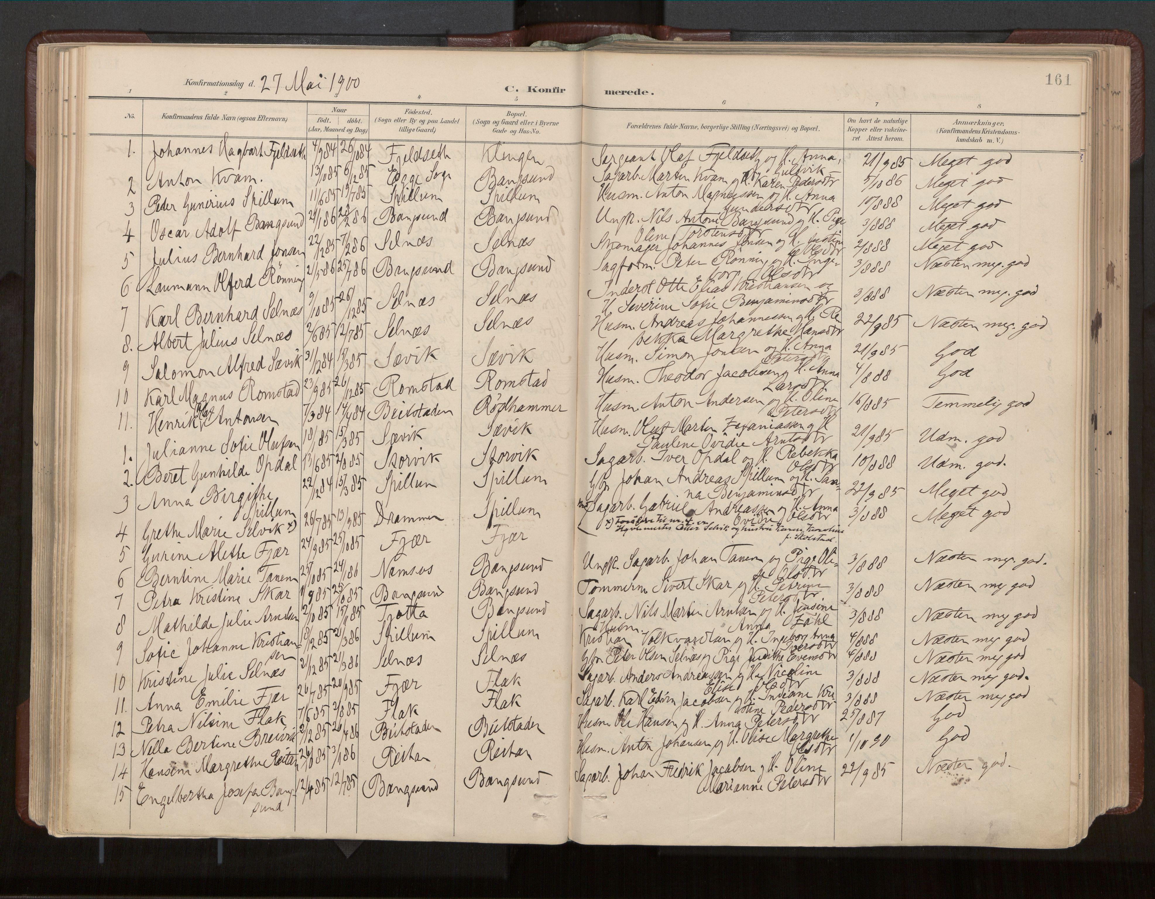 SAT, Ministerialprotokoller, klokkerbøker og fødselsregistre - Nord-Trøndelag, 770/L0589: Ministerialbok nr. 770A03, 1887-1929, s. 161