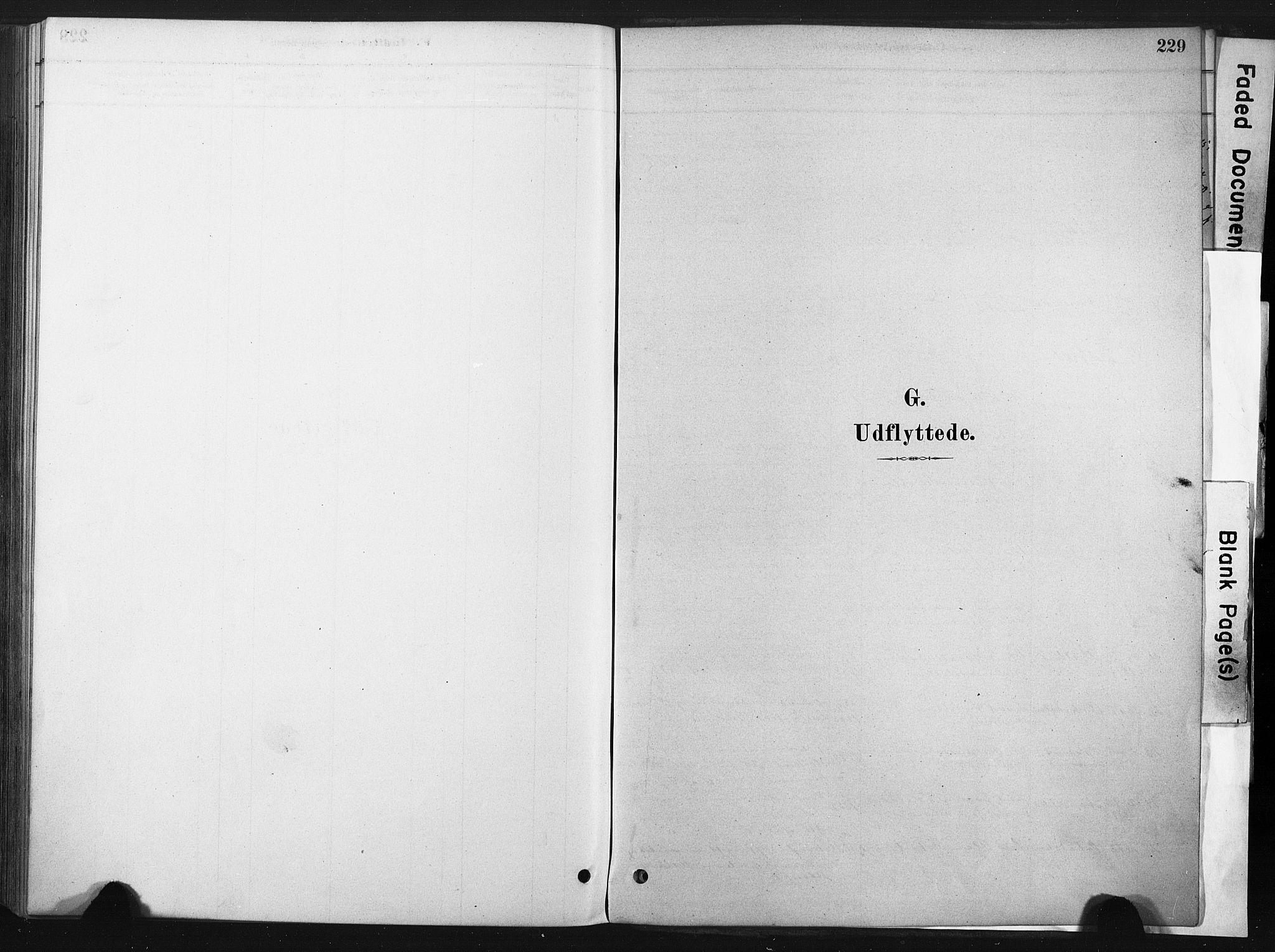 SAT, Ministerialprotokoller, klokkerbøker og fødselsregistre - Sør-Trøndelag, 667/L0795: Ministerialbok nr. 667A03, 1879-1907, s. 229