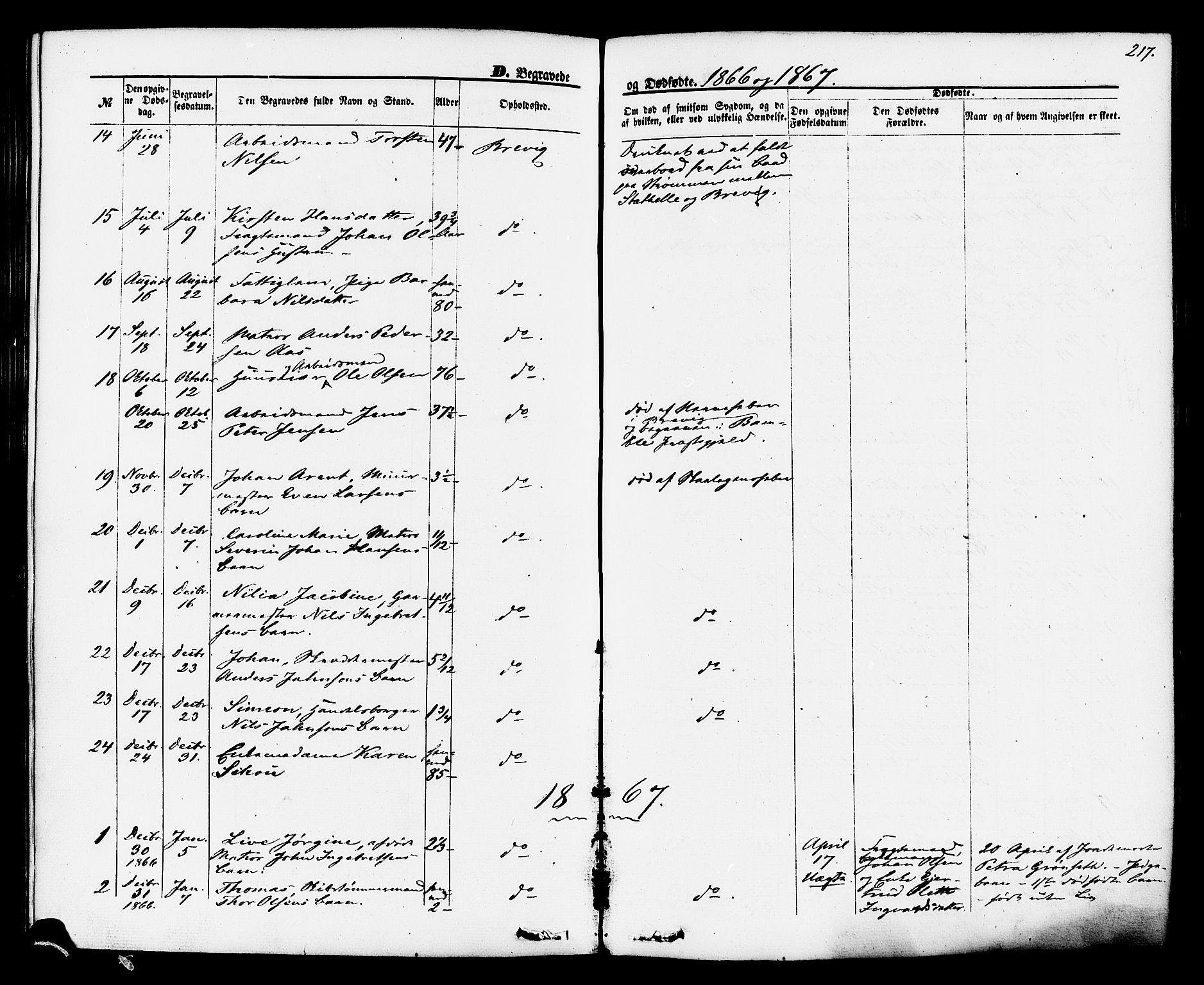 SAKO, Brevik kirkebøker, F/Fa/L0006: Ministerialbok nr. 6, 1866-1881, s. 217