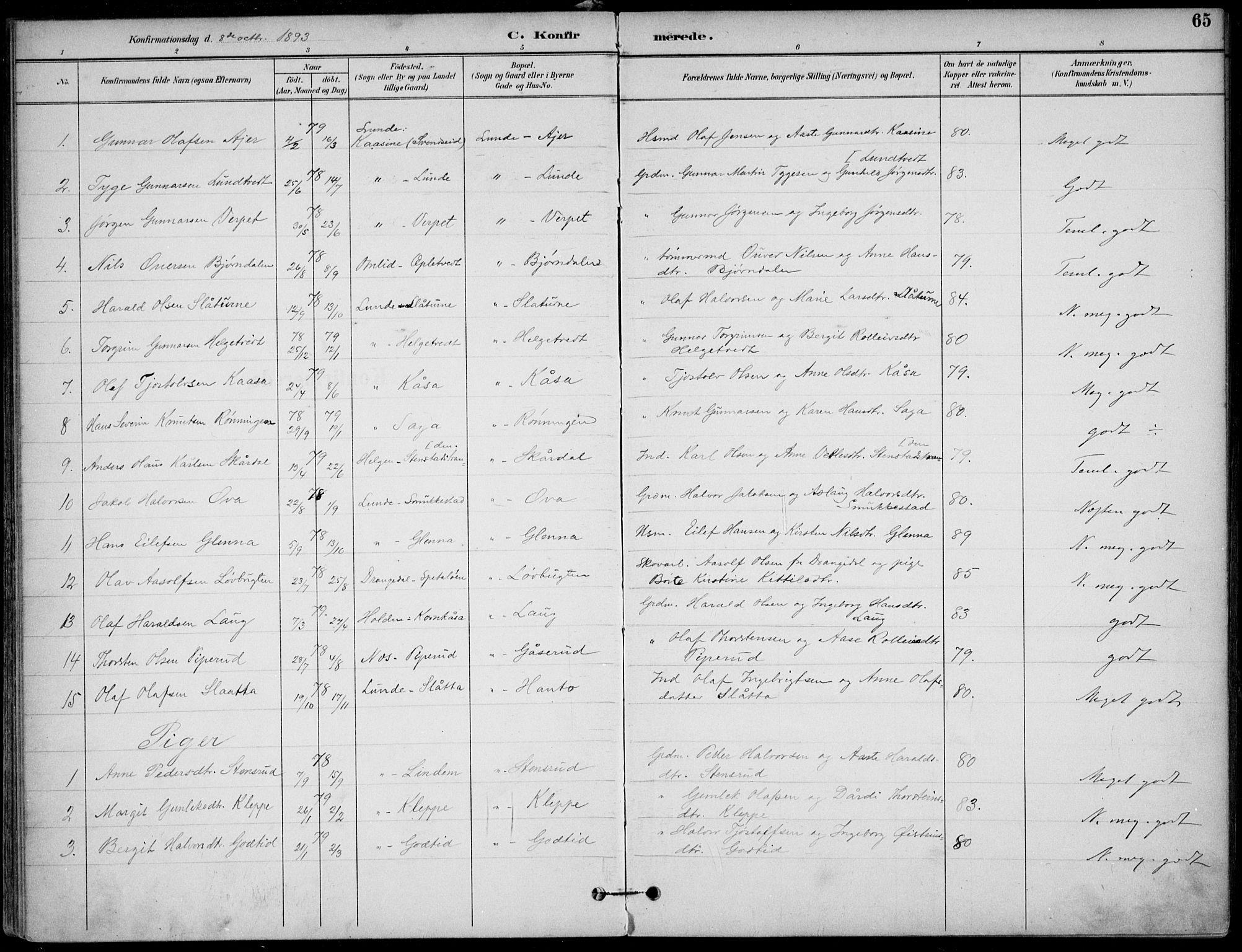 SAKO, Lunde kirkebøker, F/Fa/L0003: Ministerialbok nr. I 3, 1893-1902, s. 65
