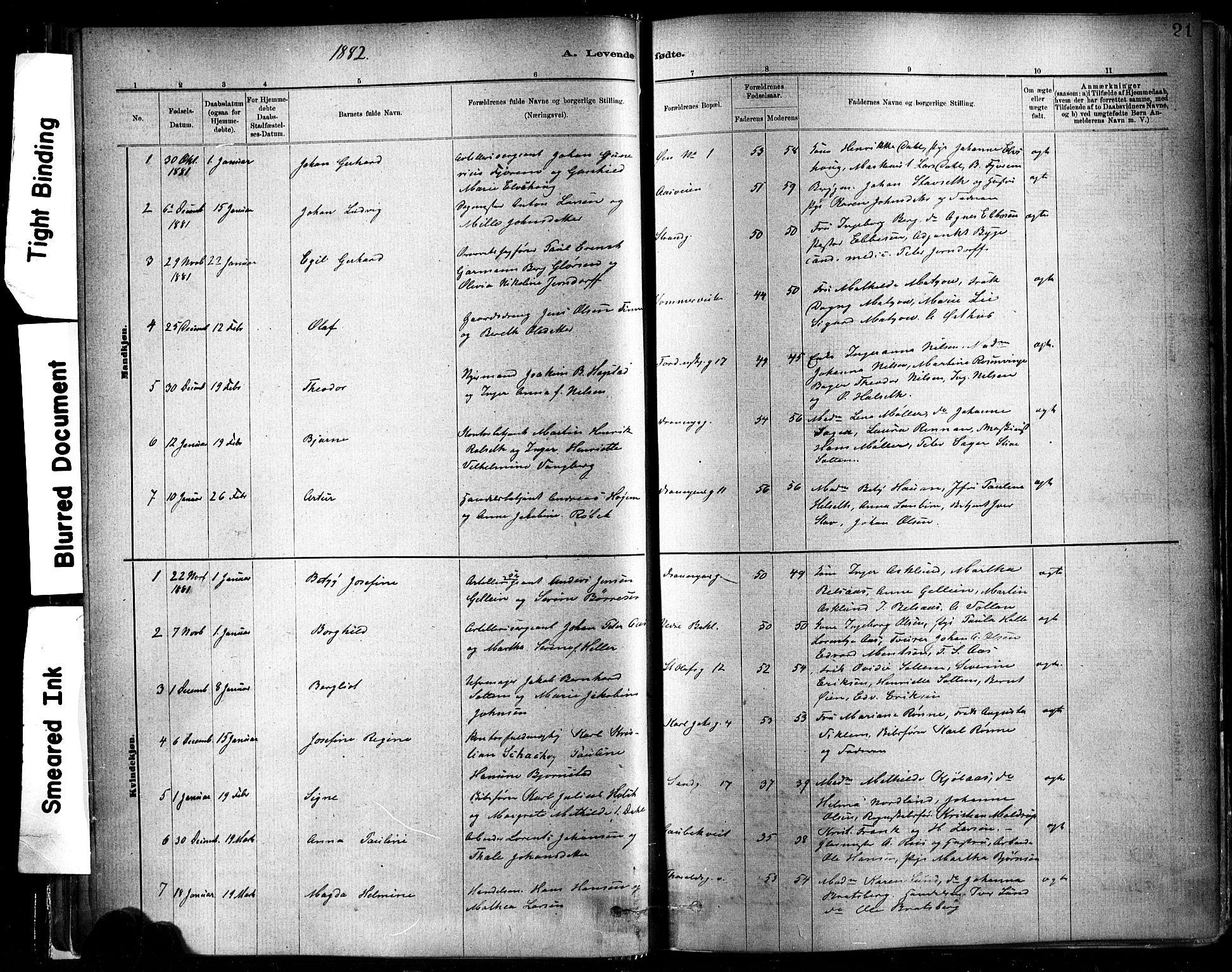 SAT, Ministerialprotokoller, klokkerbøker og fødselsregistre - Sør-Trøndelag, 602/L0119: Ministerialbok nr. 602A17, 1880-1901, s. 21