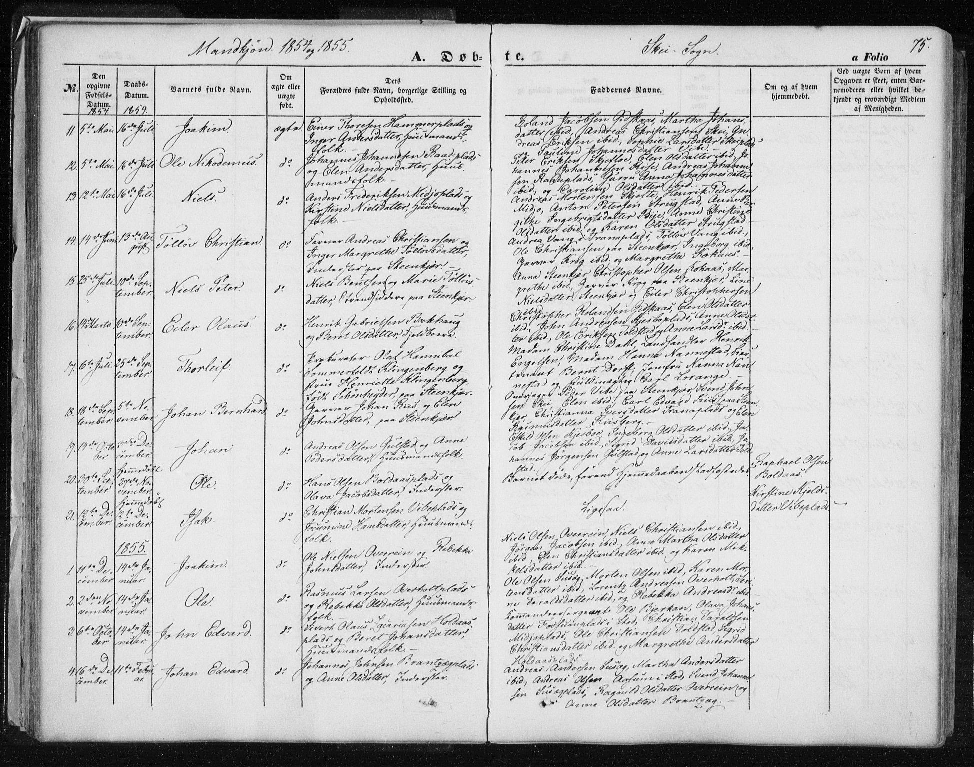 SAT, Ministerialprotokoller, klokkerbøker og fødselsregistre - Nord-Trøndelag, 735/L0342: Ministerialbok nr. 735A07 /2, 1849-1862, s. 75