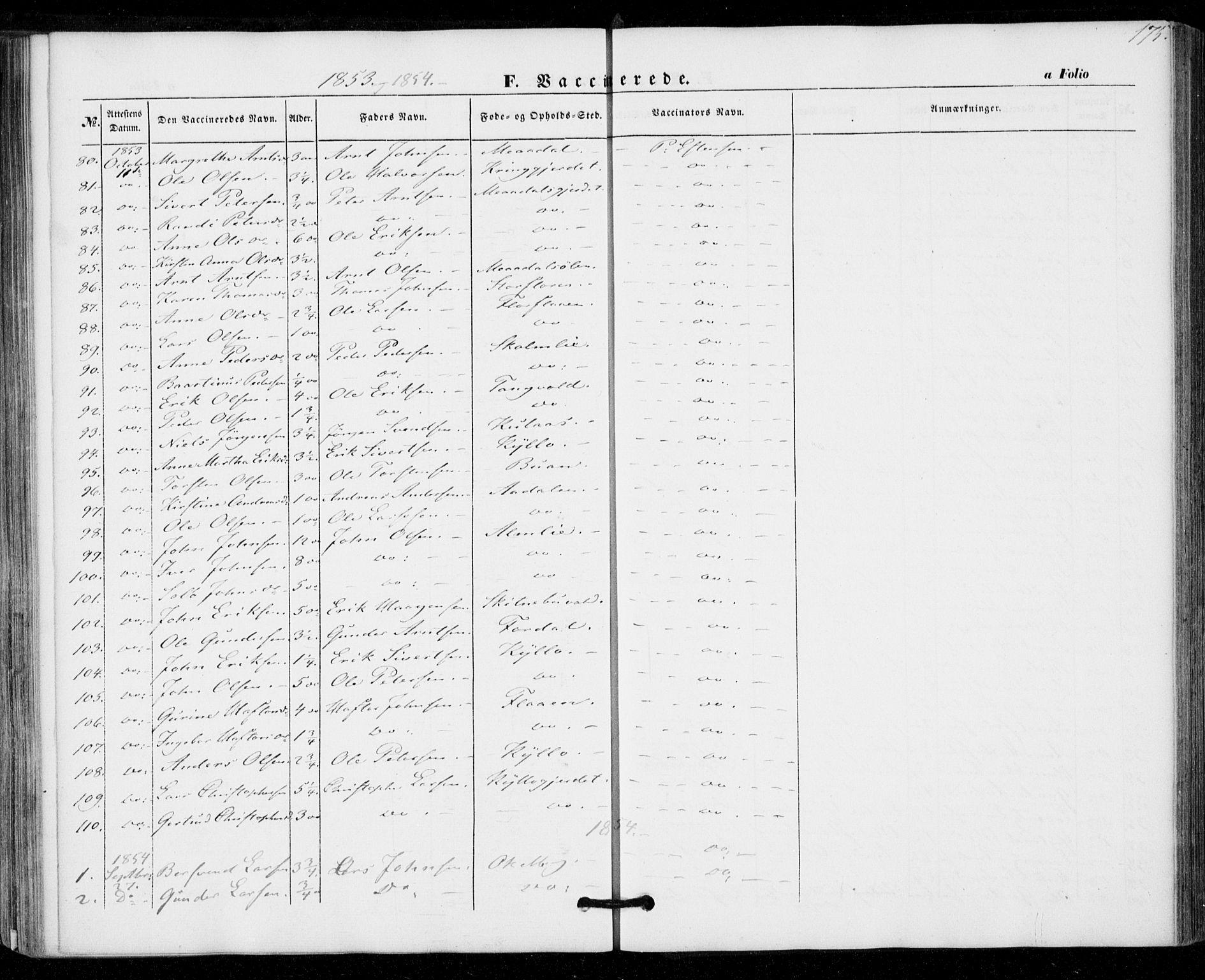 SAT, Ministerialprotokoller, klokkerbøker og fødselsregistre - Nord-Trøndelag, 703/L0028: Ministerialbok nr. 703A01, 1850-1862, s. 175