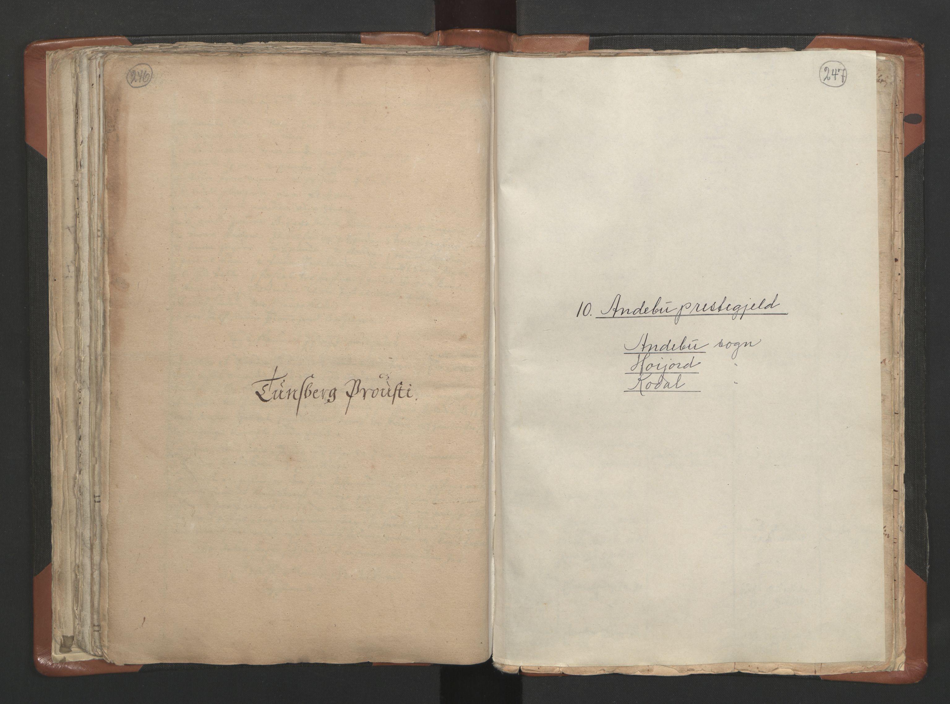 RA, Sogneprestenes manntall 1664-1666, nr. 10: Tønsberg prosti, 1664-1666, s. 246-247