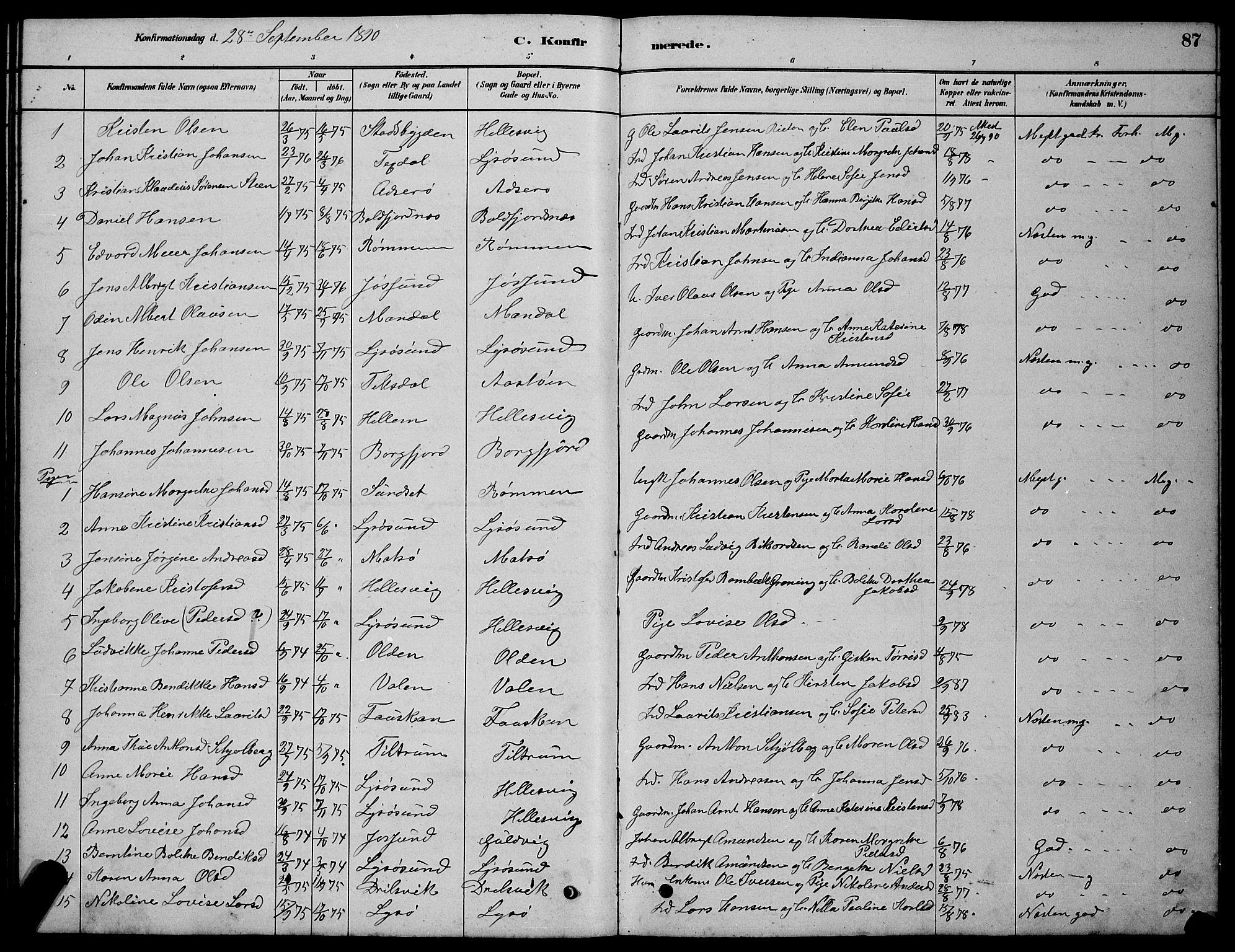 SAT, Ministerialprotokoller, klokkerbøker og fødselsregistre - Sør-Trøndelag, 654/L0665: Klokkerbok nr. 654C01, 1879-1901, s. 87