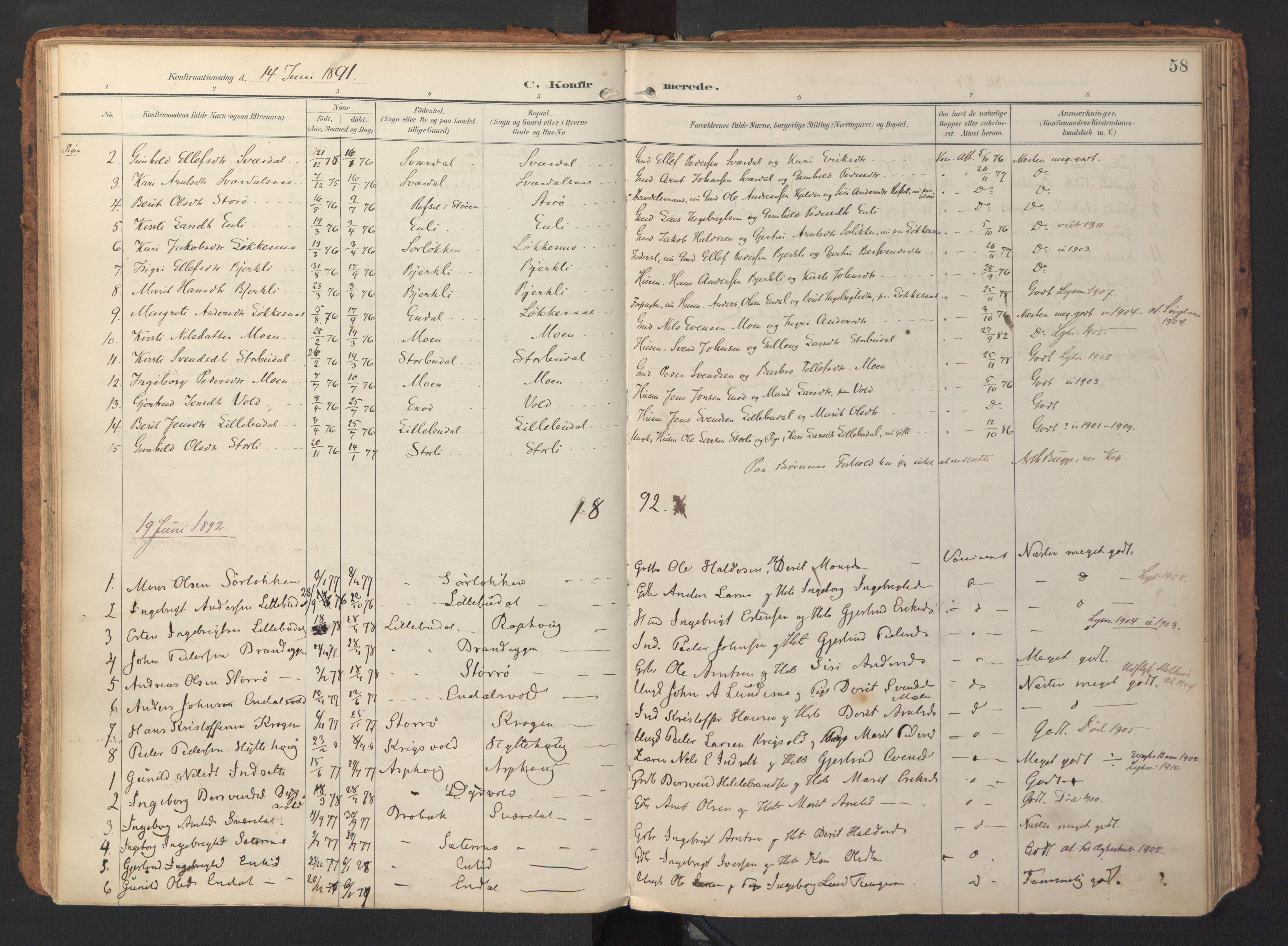 SAT, Ministerialprotokoller, klokkerbøker og fødselsregistre - Sør-Trøndelag, 690/L1050: Ministerialbok nr. 690A01, 1889-1929, s. 58