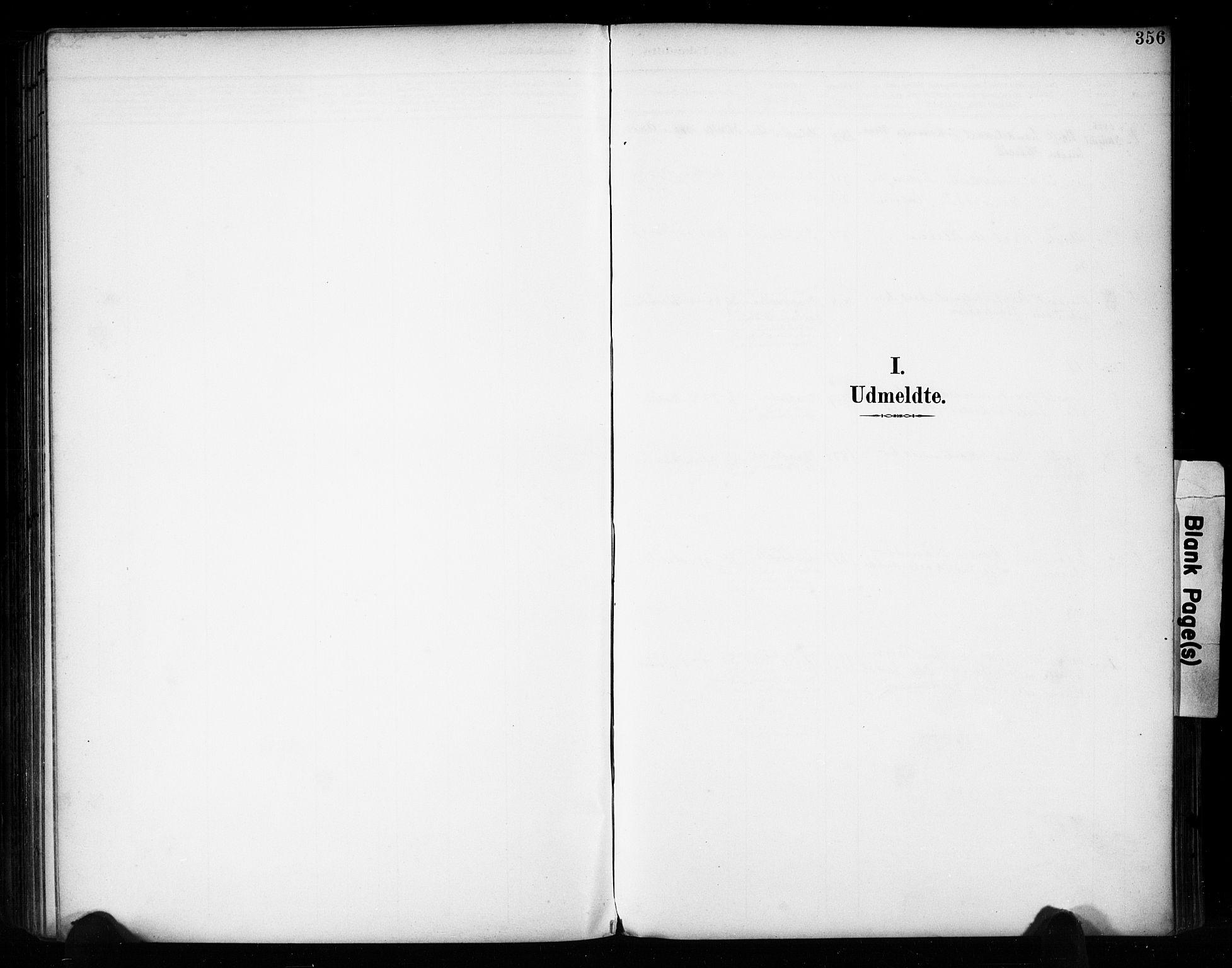 SAH, Vestre Toten prestekontor, Ministerialbok nr. 11, 1895-1906, s. 356