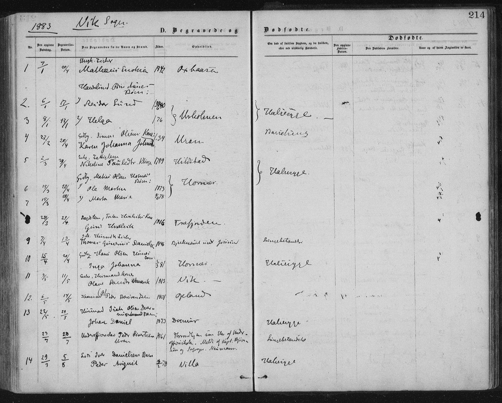 SAT, Ministerialprotokoller, klokkerbøker og fødselsregistre - Nord-Trøndelag, 771/L0596: Ministerialbok nr. 771A03, 1870-1884, s. 214