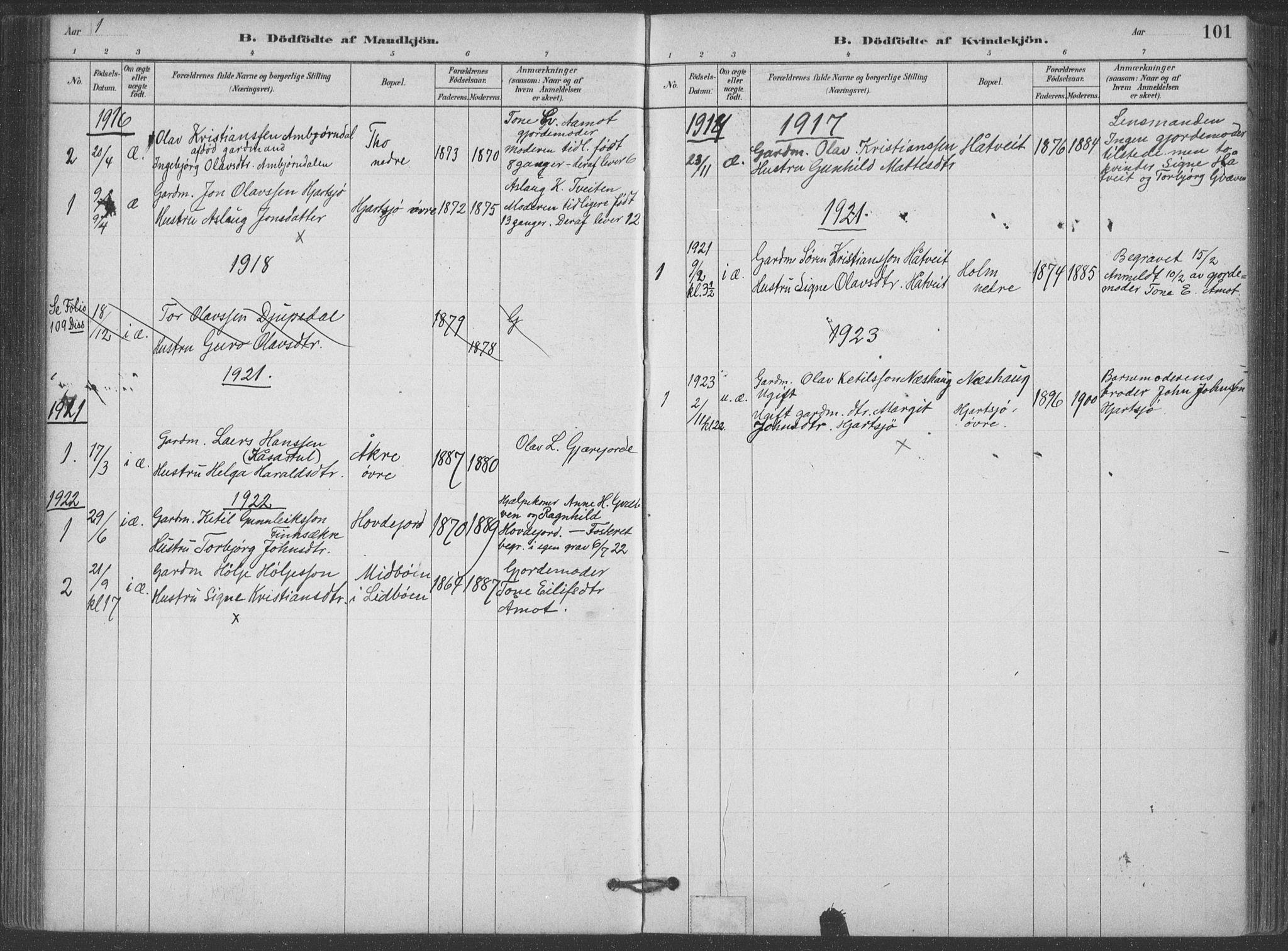 SAKO, Hjartdal kirkebøker, F/Fa/L0010: Ministerialbok nr. I 10, 1880-1929, s. 101