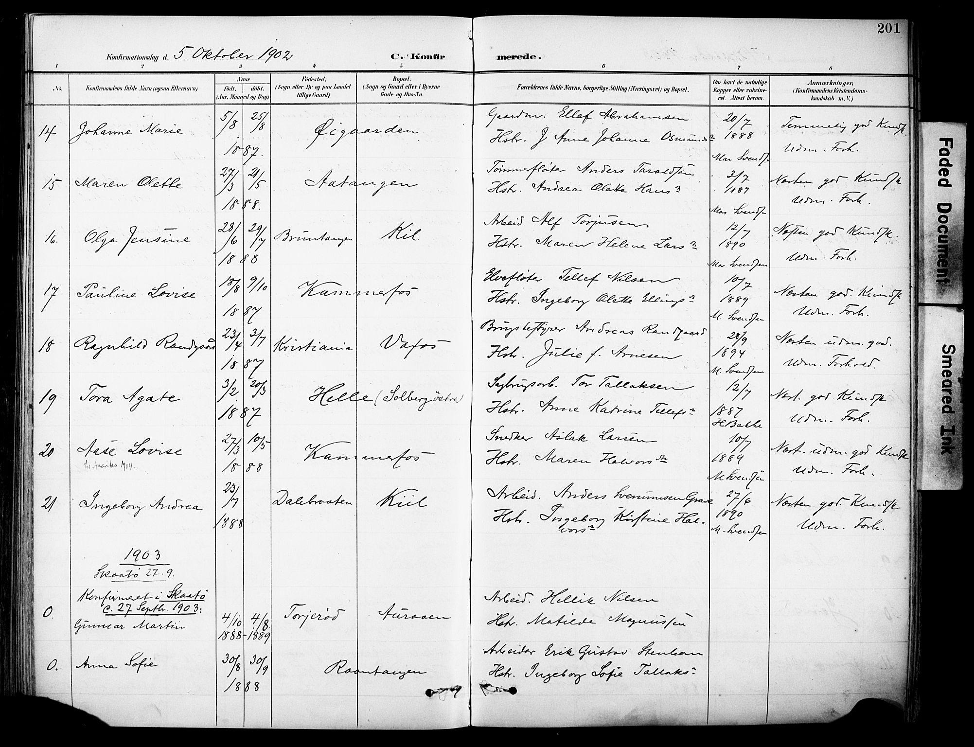 SAKO, Sannidal kirkebøker, F/Fa/L0016: Ministerialbok nr. 16, 1895-1911, s. 201
