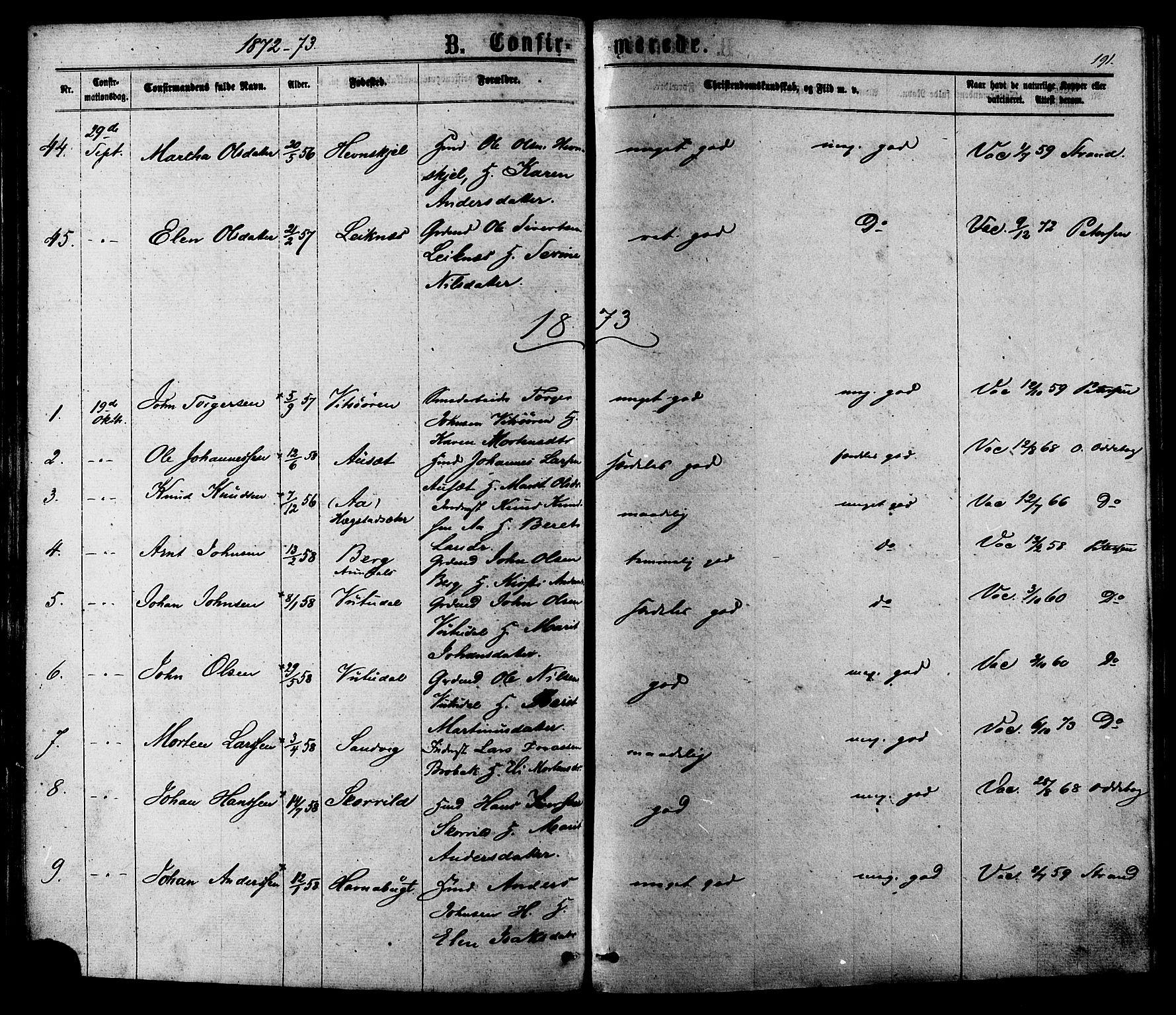 SAT, Ministerialprotokoller, klokkerbøker og fødselsregistre - Sør-Trøndelag, 630/L0495: Ministerialbok nr. 630A08, 1868-1878, s. 191