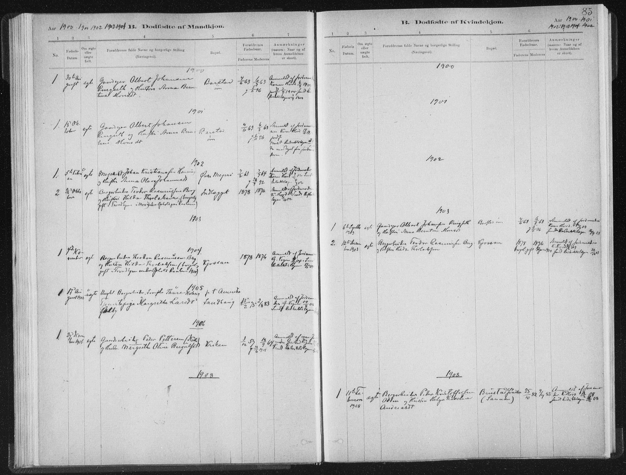 SAT, Ministerialprotokoller, klokkerbøker og fødselsregistre - Nord-Trøndelag, 722/L0220: Ministerialbok nr. 722A07, 1881-1908, s. 85