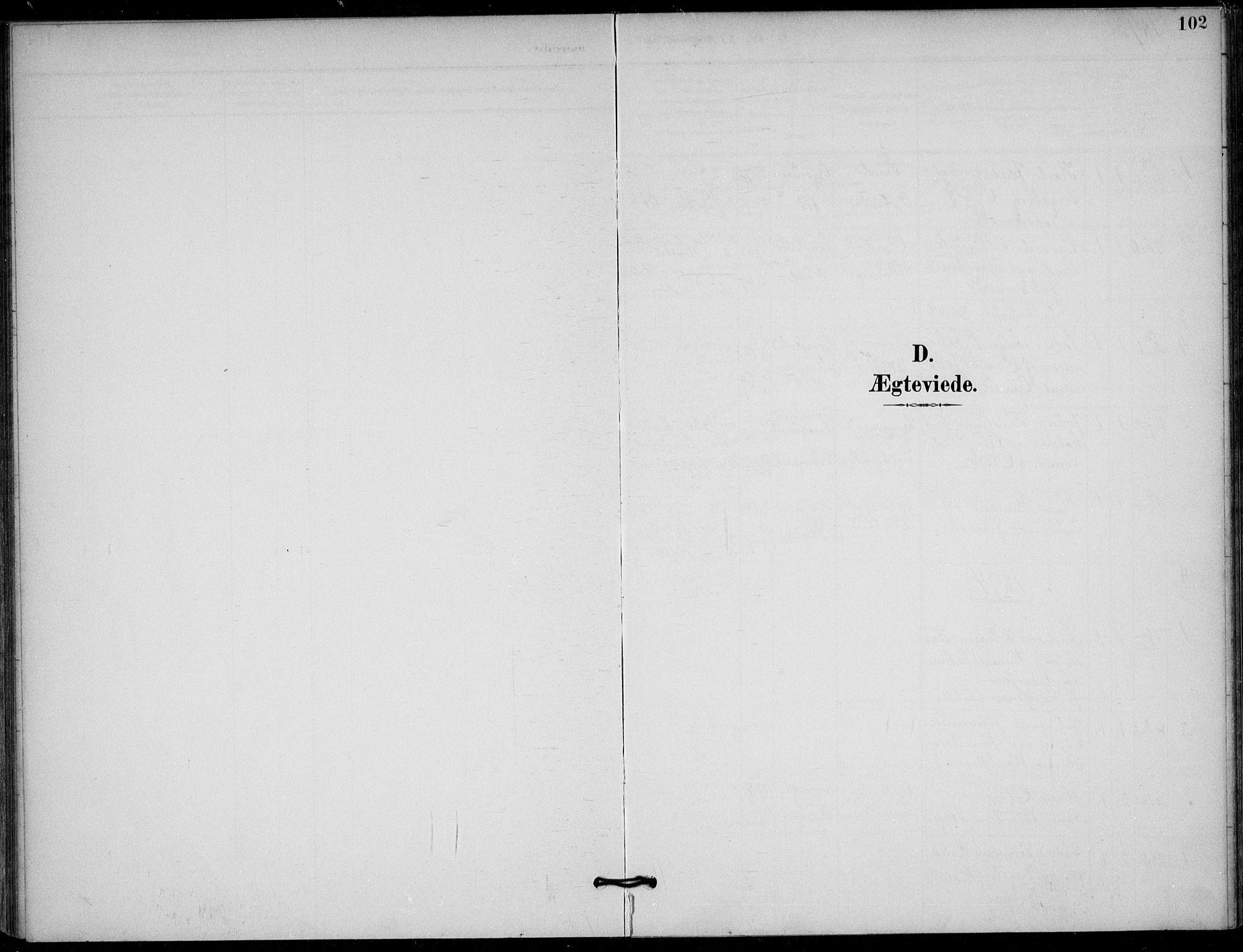 SAKO, Solum kirkebøker, F/Fb/L0002: Ministerialbok nr. II 2, 1893-1901, s. 102