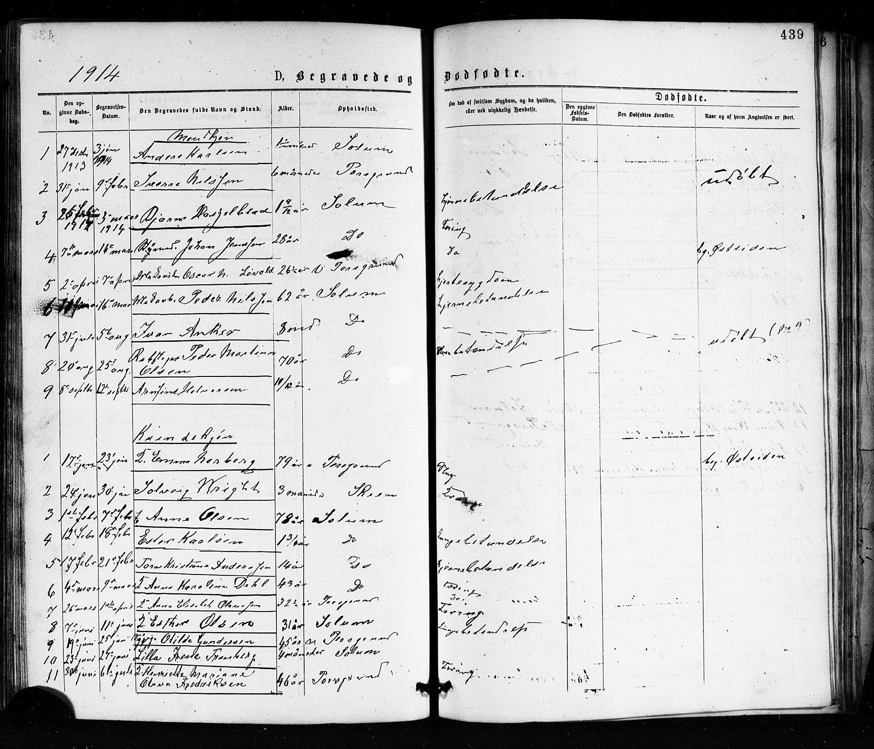 SAKO, Porsgrunn kirkebøker , G/Ga/L0003: Klokkerbok nr. I 3, 1877-1915, s. 439