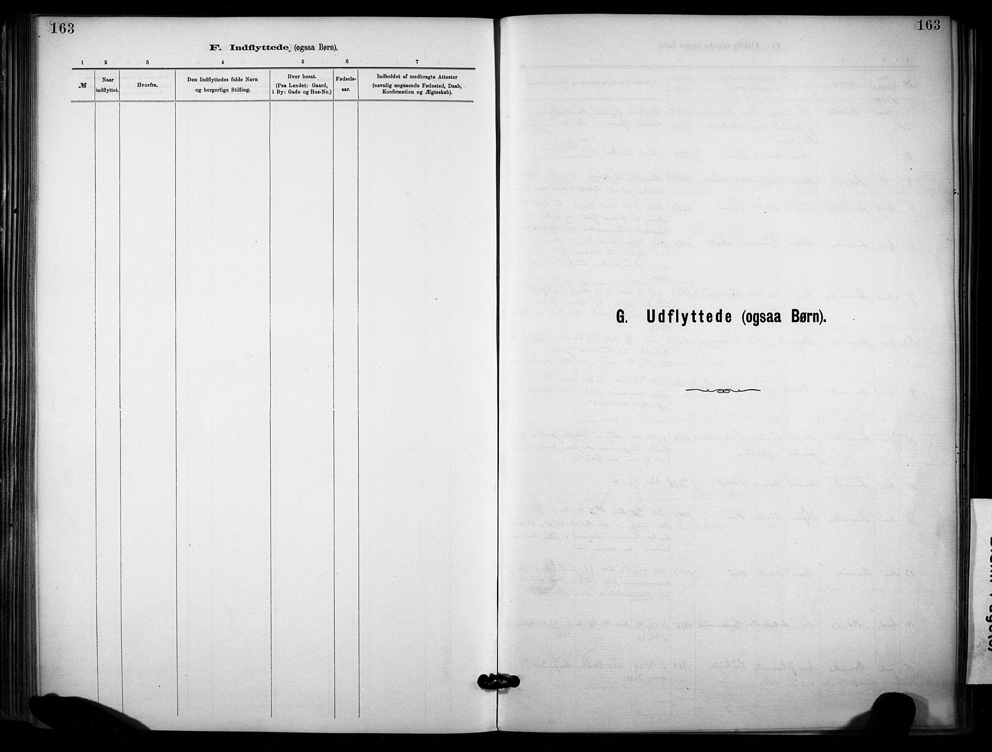 SAKO, Lunde kirkebøker, F/Fa/L0002: Ministerialbok nr. I 2, 1884-1892, s. 163