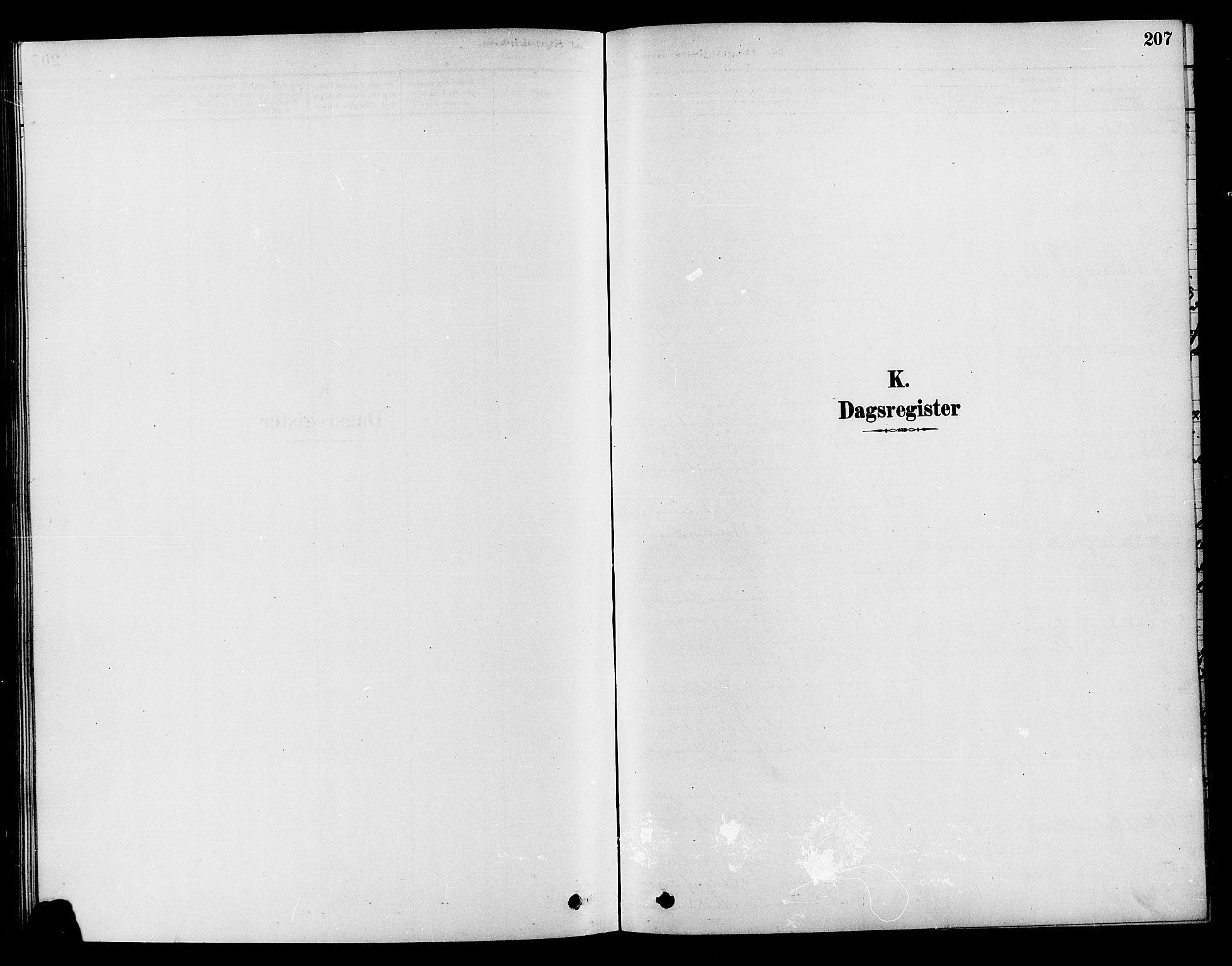 SAH, Søndre Land prestekontor, K/L0002: Ministerialbok nr. 2, 1878-1894, s. 207