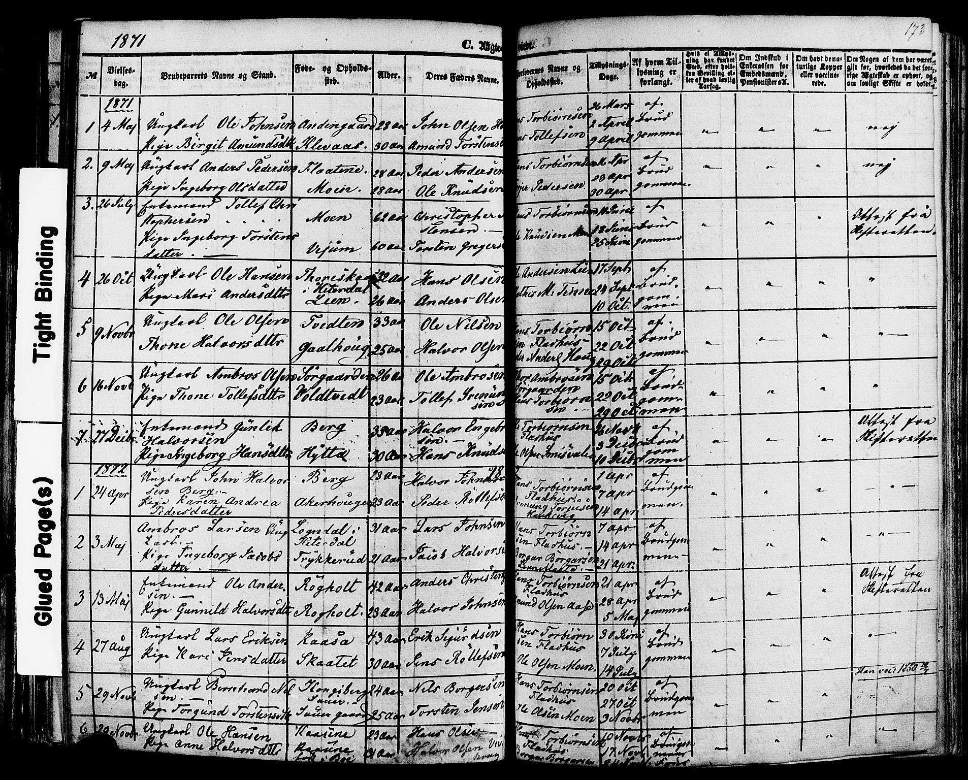 SAKO, Sauherad kirkebøker, F/Fa/L0007: Ministerialbok nr. I 7, 1851-1873, s. 173