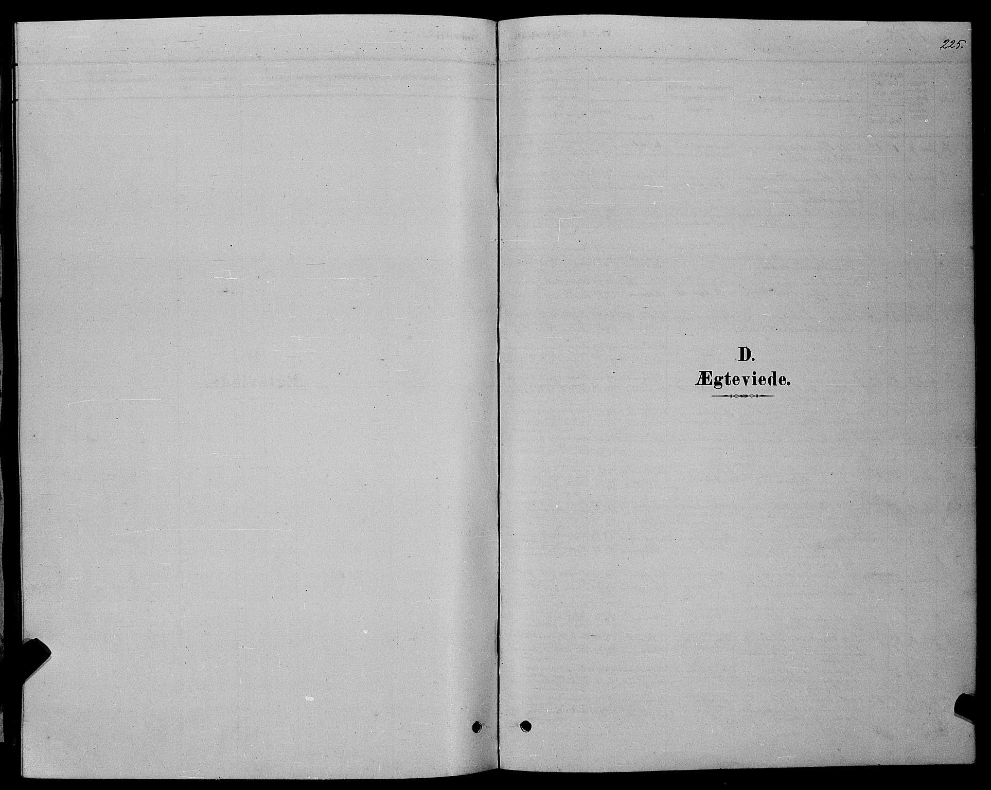 SAT, Ministerialprotokoller, klokkerbøker og fødselsregistre - Møre og Romsdal, 529/L0466: Klokkerbok nr. 529C03, 1878-1888, s. 225